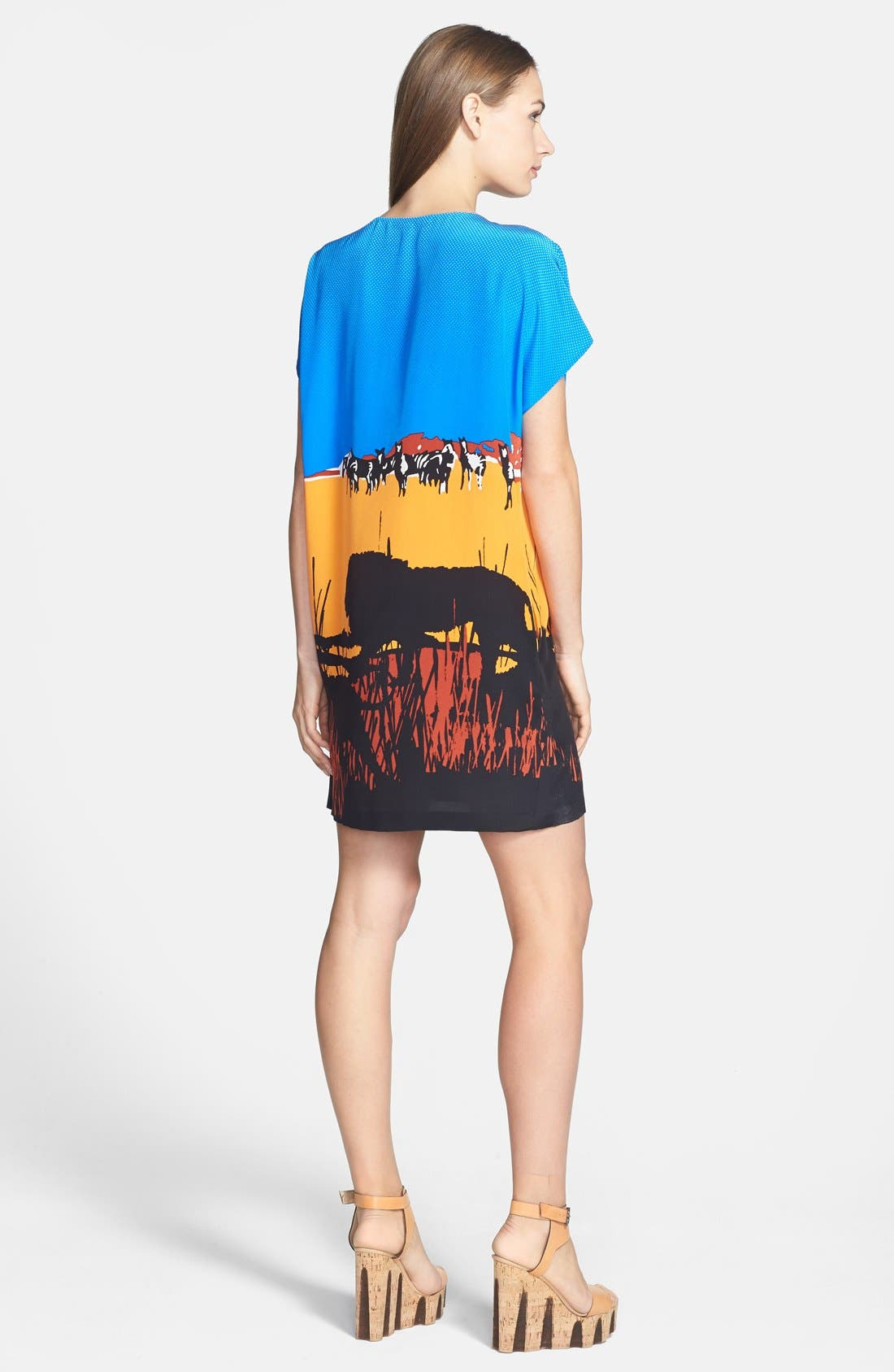 Alternate Image 2  - Diane von Furstenberg 'Harriet' Graphic Silk Blend Shift Dress