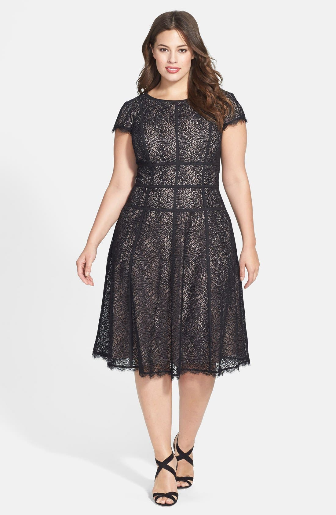 Alternate Image 3  - Adrianna Papell 'Converging' Banded Lace Dress (Plus Size)