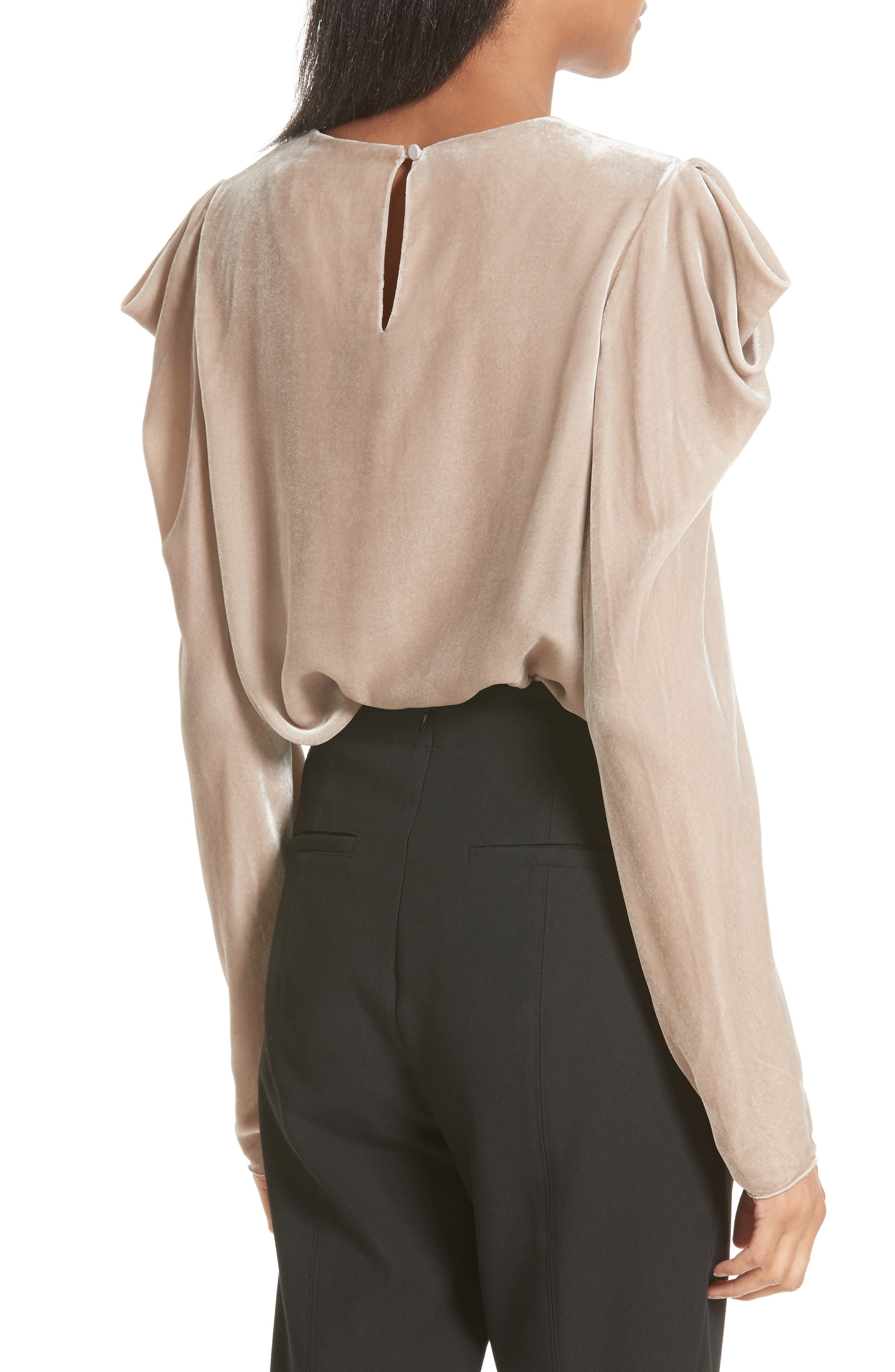 Drape Sleeve Velvet Top,                             Alternate thumbnail 2, color,                             Marble