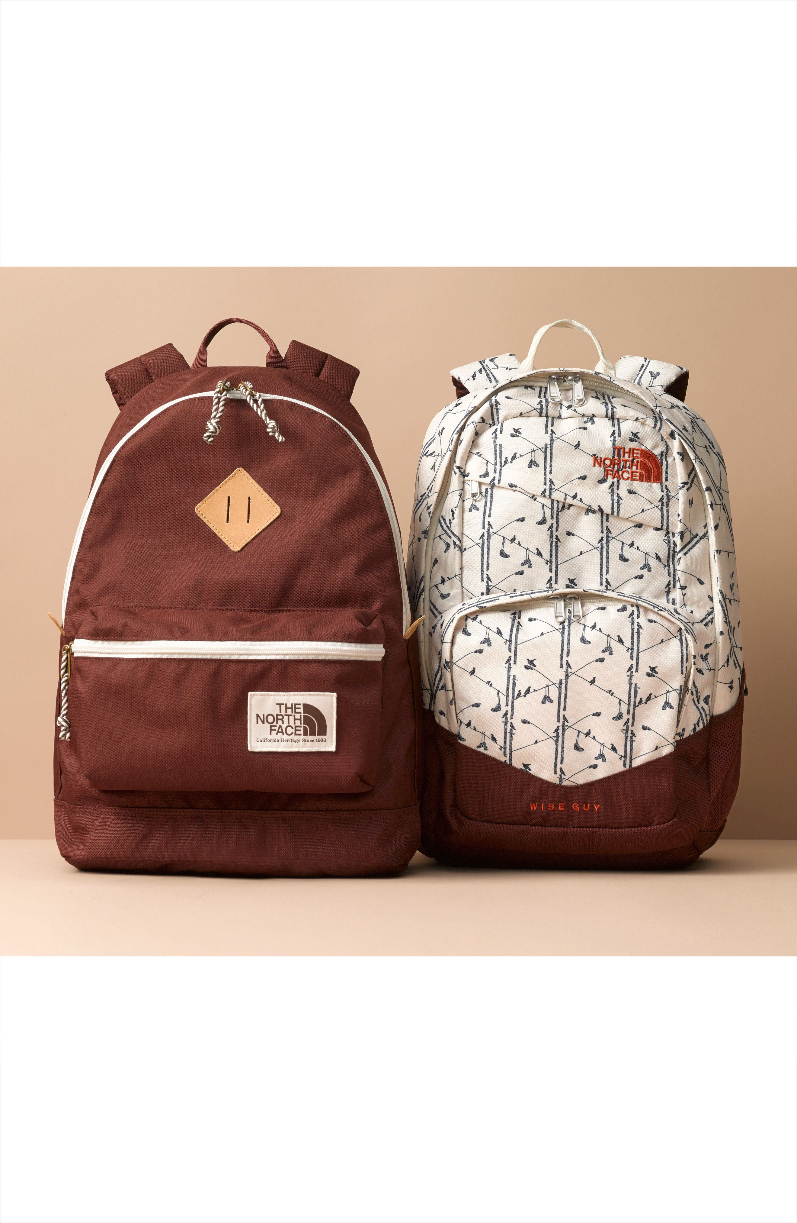 Alternate Image 4  - The North Face Berkeley Backpack