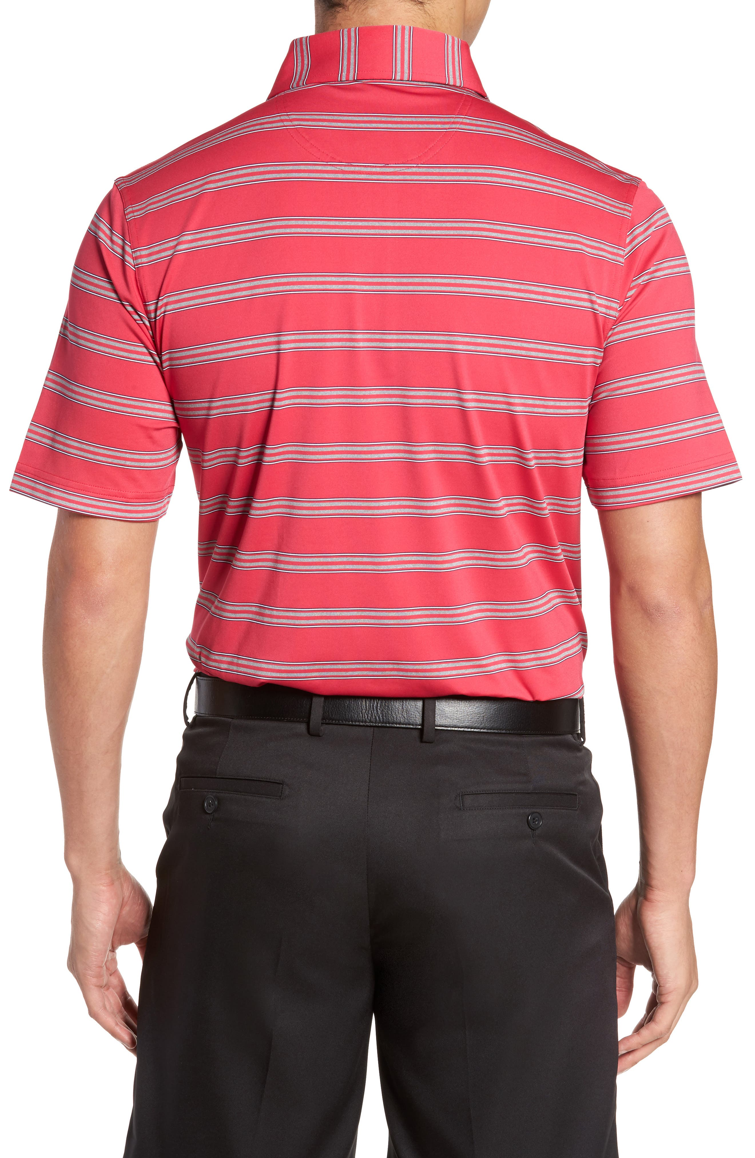 Alternate Image 2  - Bobby Jones XH2O Wren Heather Stripe Polo