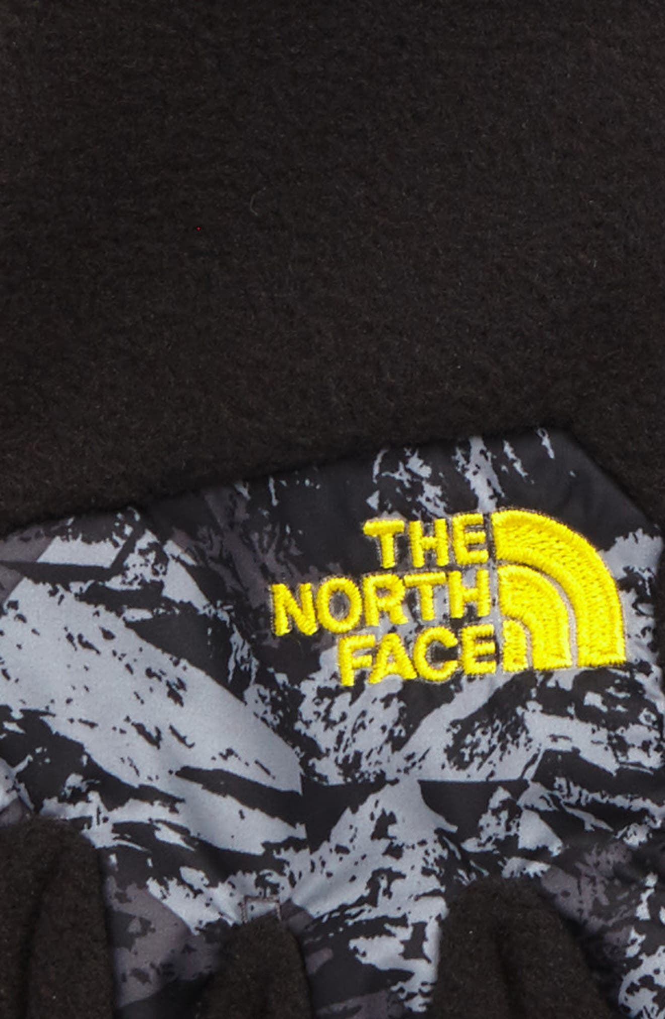 Alternate Image 3  - The North Face Denali Etip™ Gloves (Kids)
