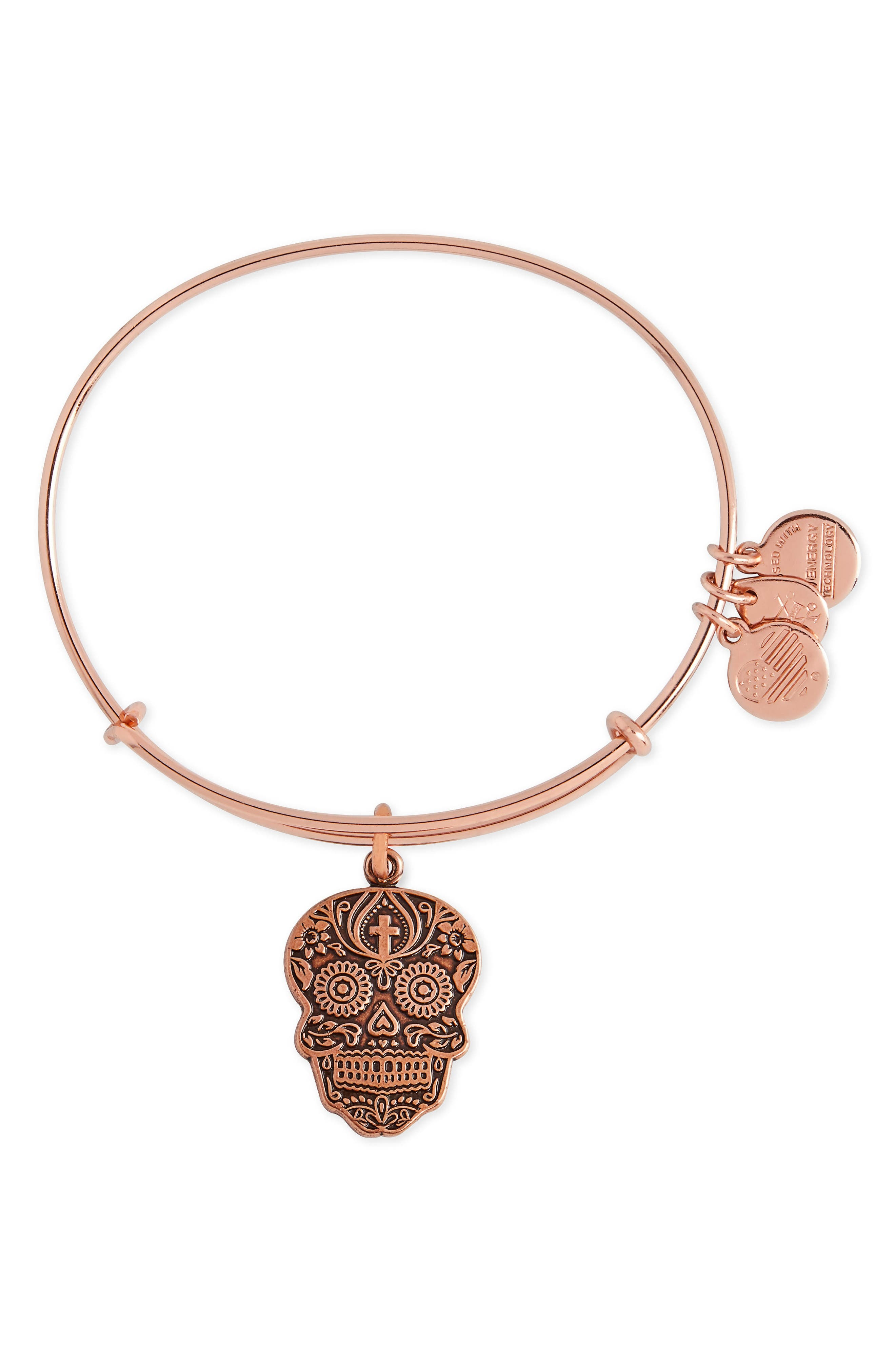 Alternate Image 1 Selected - Alex and Ani 'Calavera' Adjustable Wire Bangle (Nordstrom Exclusive)