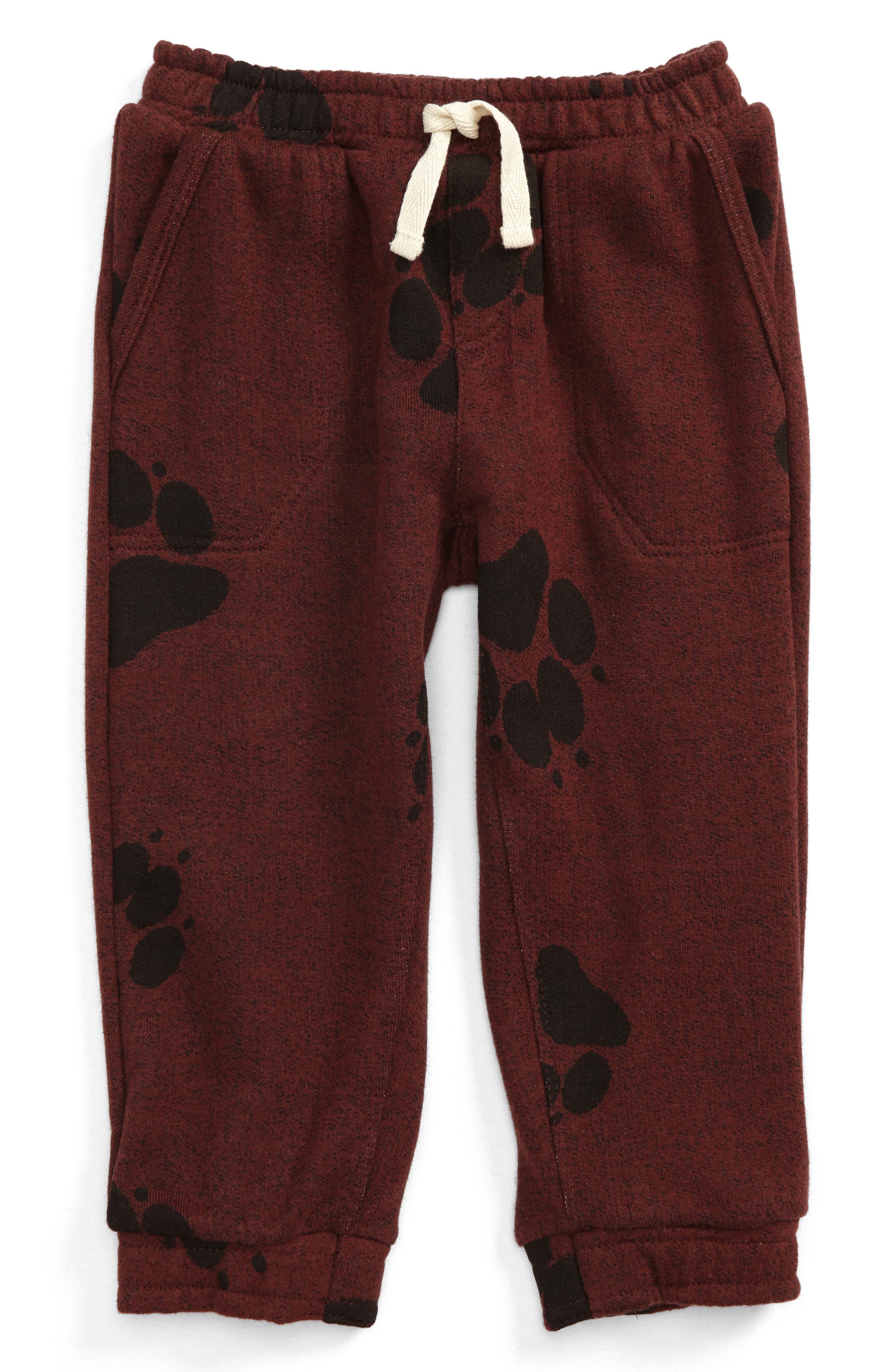 Peek Paw Print Jogger Pants (Baby Boys)
