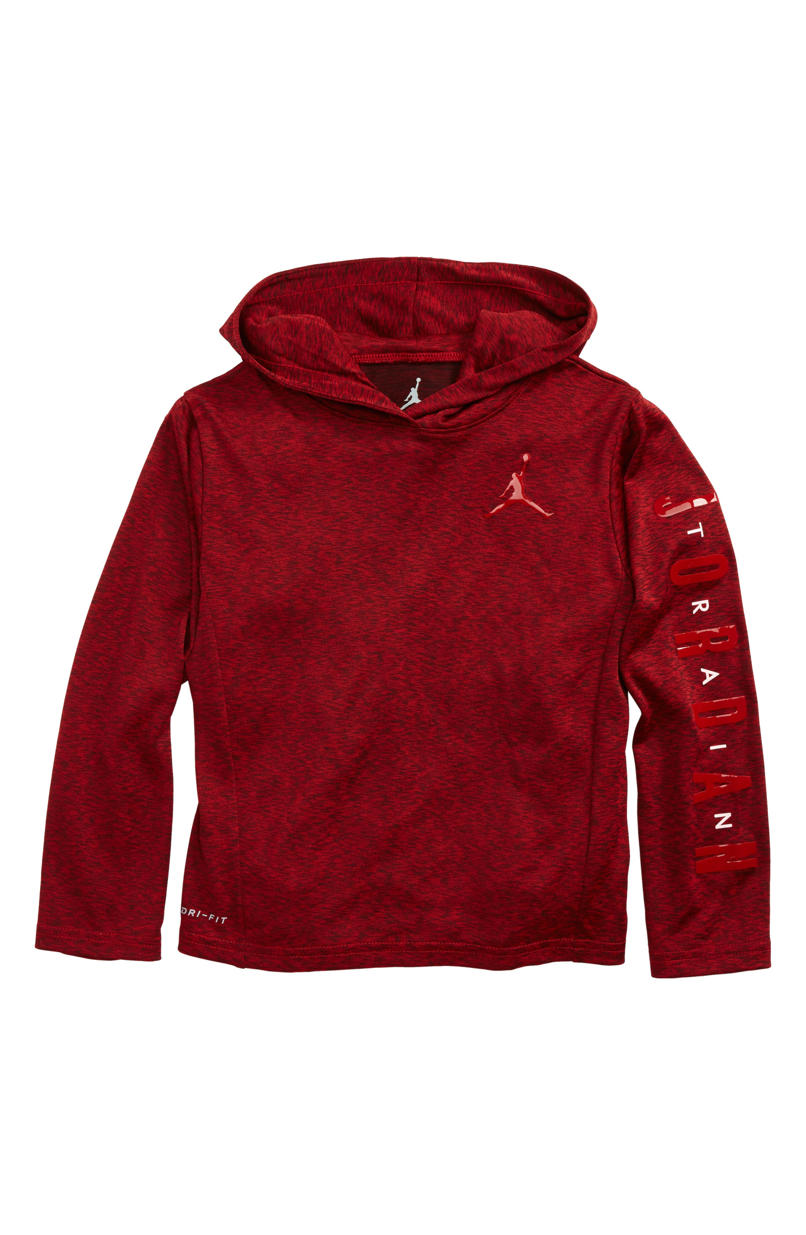 Alternate Image 1 Selected - Jordan Dri-FIT Hooded T-Shirt (Toddler Boys & Little Boys)