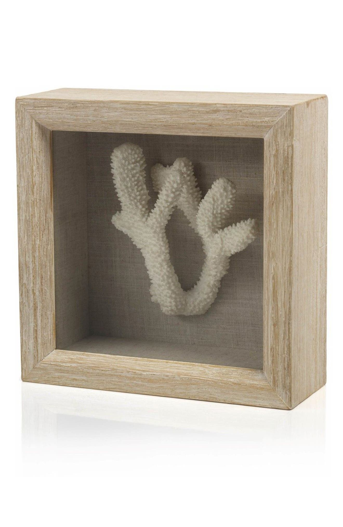 Staghorn Coral Shadow Box Art,                         Main,                         color, Off-White/ Brown/ Beige