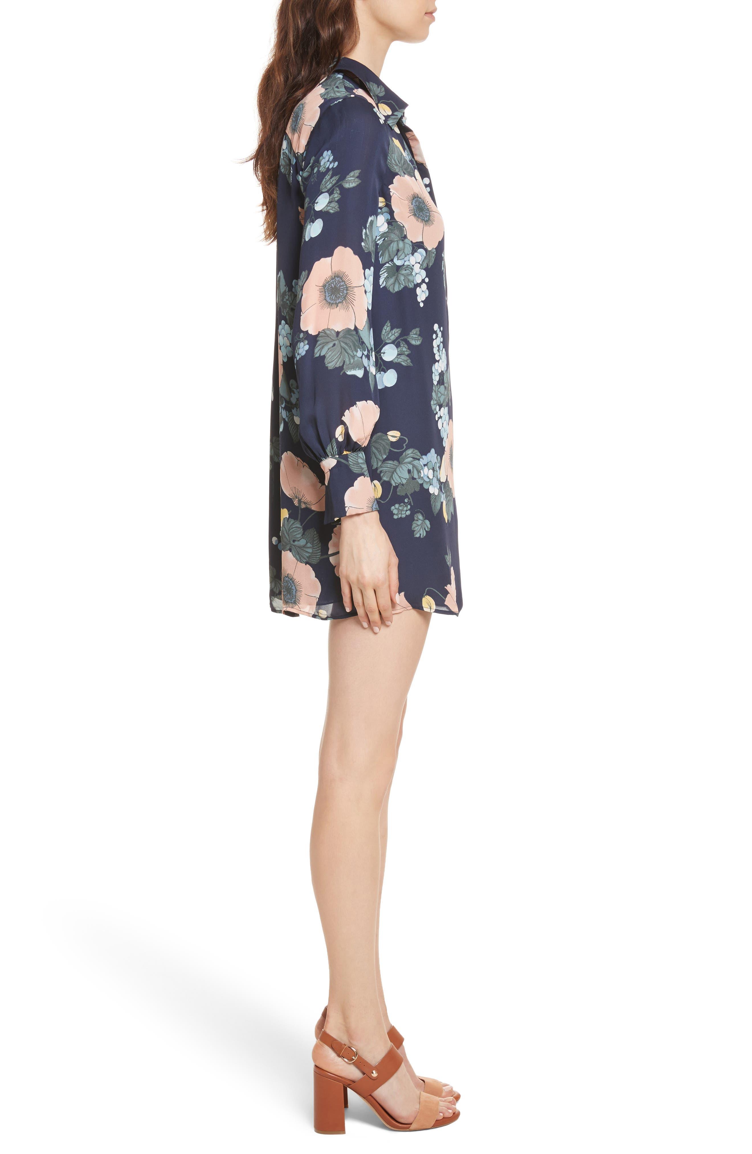 Alternate Image 3  - Joie Amaranda Print Silk Shirtdress