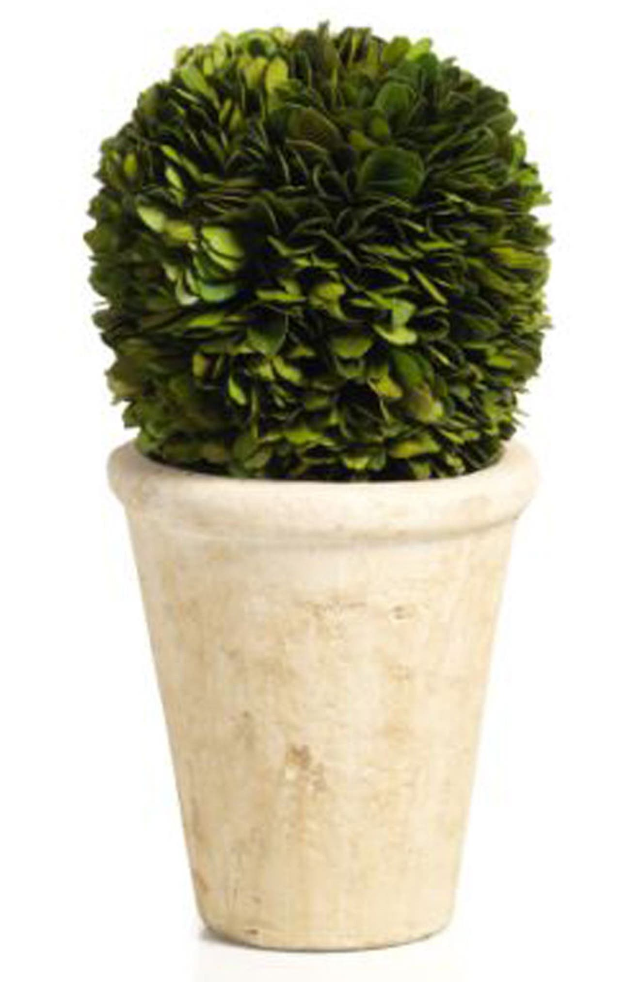 Boxwood Topiary Decoration,                             Main thumbnail 1, color,                             Green/ Gray