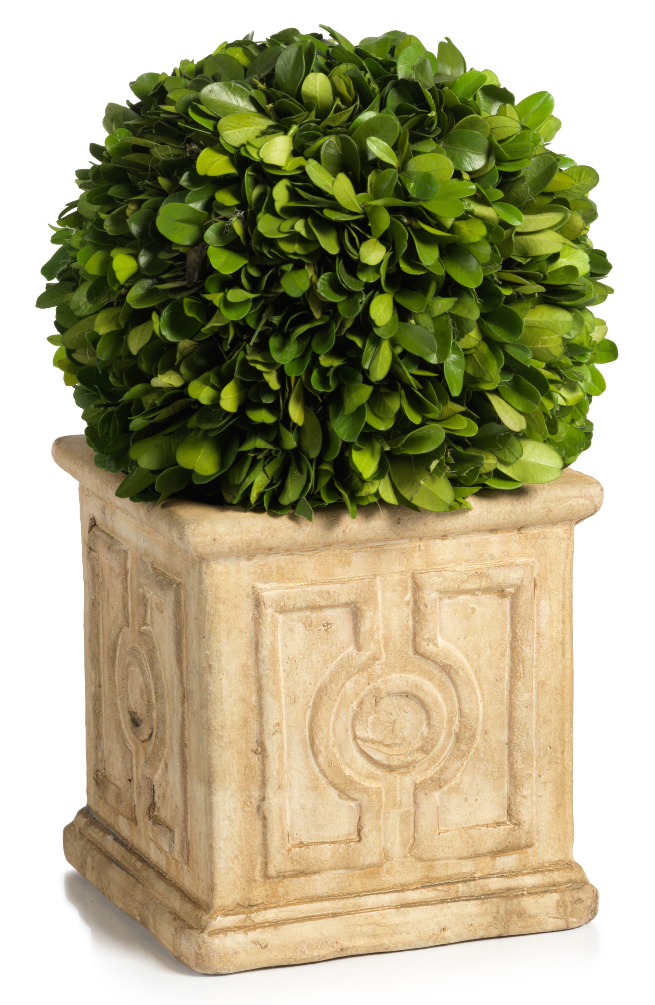 Main Image - Zodax Cinza Boxwood Topiary Decoration