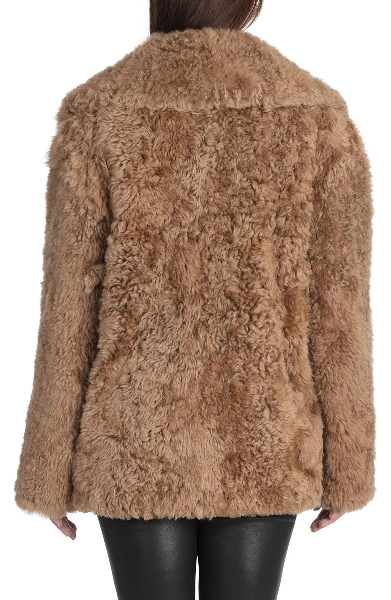 BAGATELLE.CITY The Teddy Genuine Lamb Shearling Coat,                             Alternate thumbnail 2, color,                             Camel