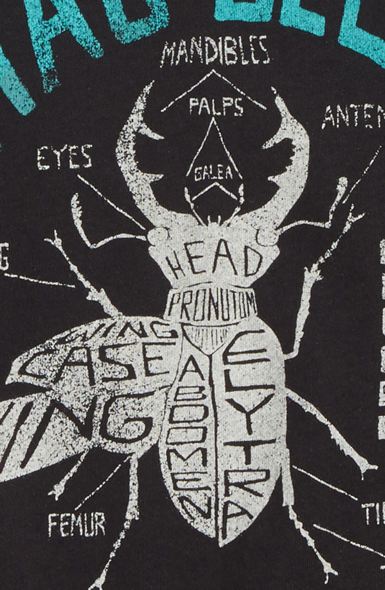 Stag Beetle T-Shirt,                             Alternate thumbnail 2, color,                             Black