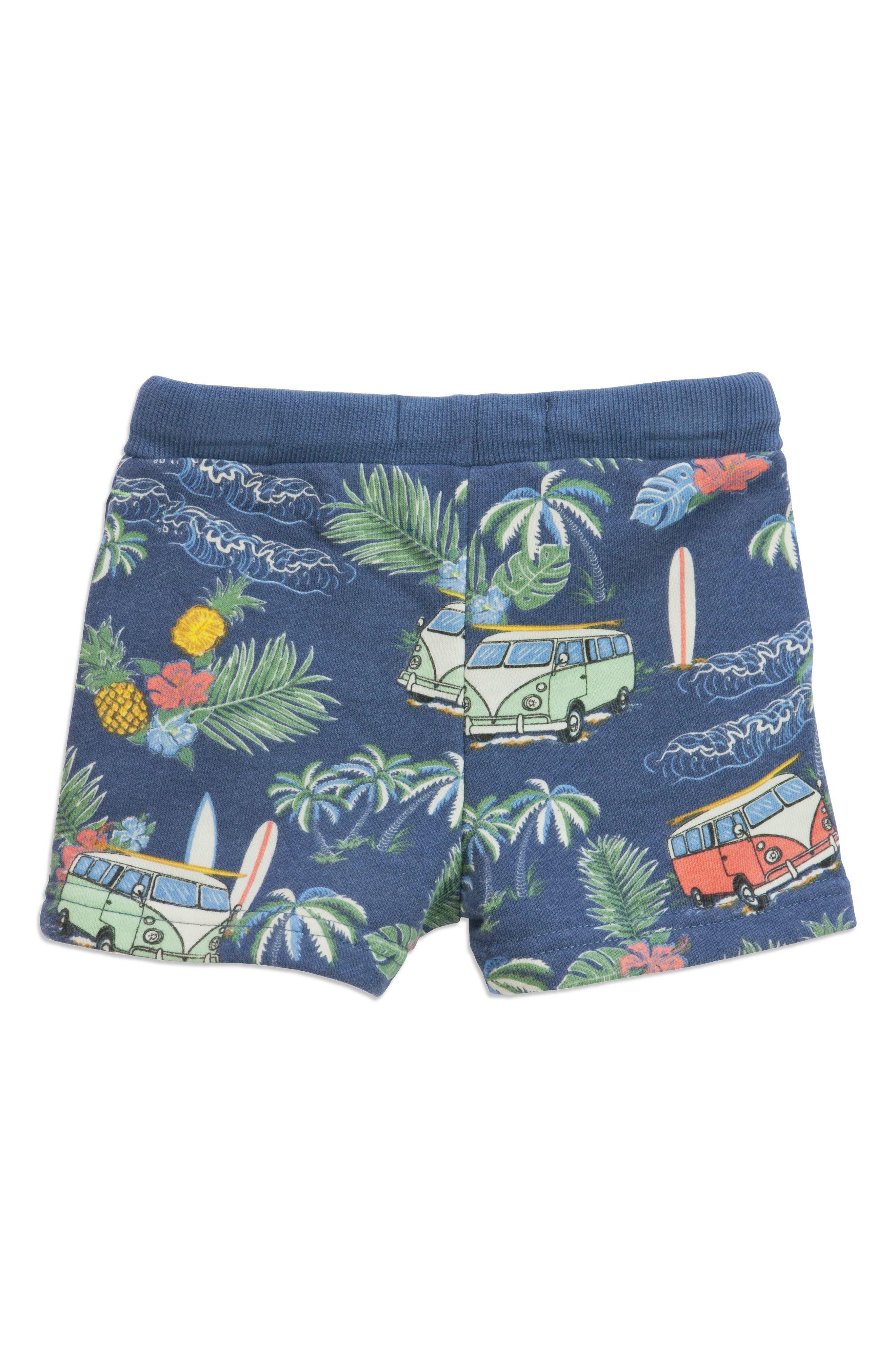 Summer Vacay Adriel Knit Shorts,                             Alternate thumbnail 2, color,                             Blue