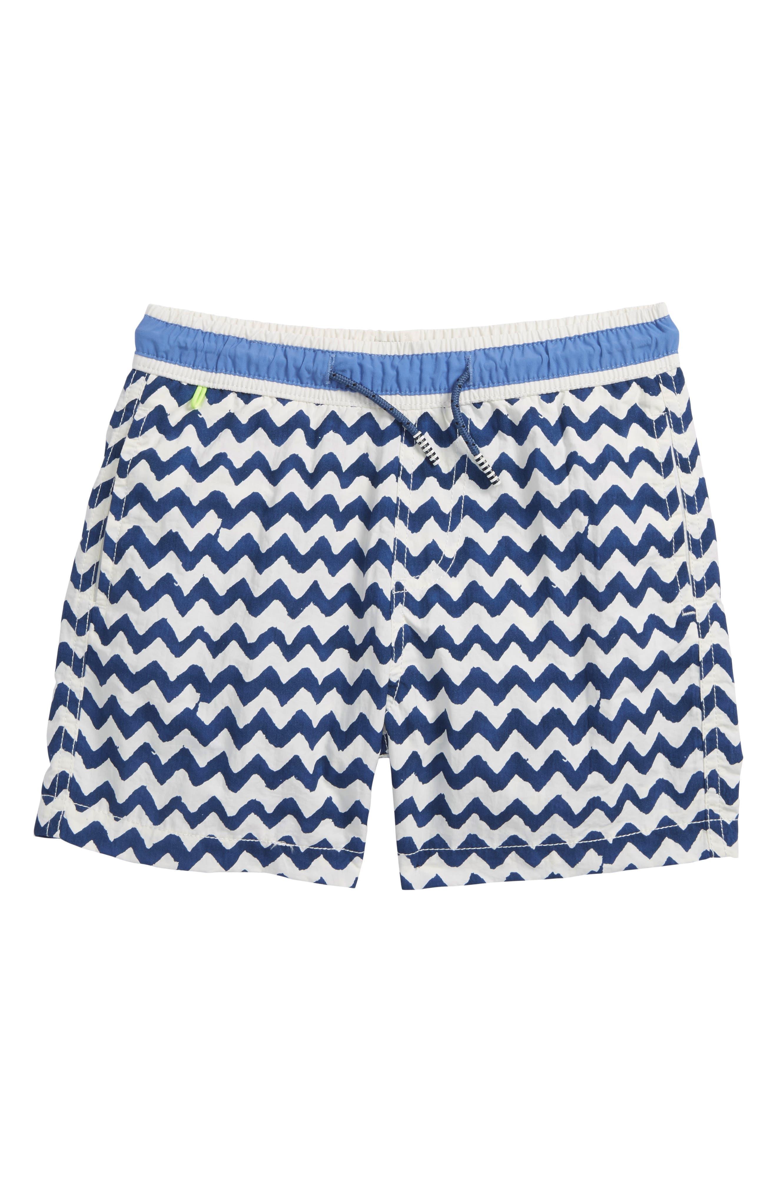 Allover Print Swim Trunks,                         Main,                         color, Blue