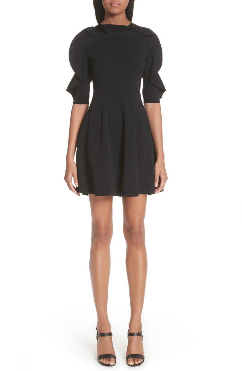 Lace Inset Ruffle Sleeve Dress