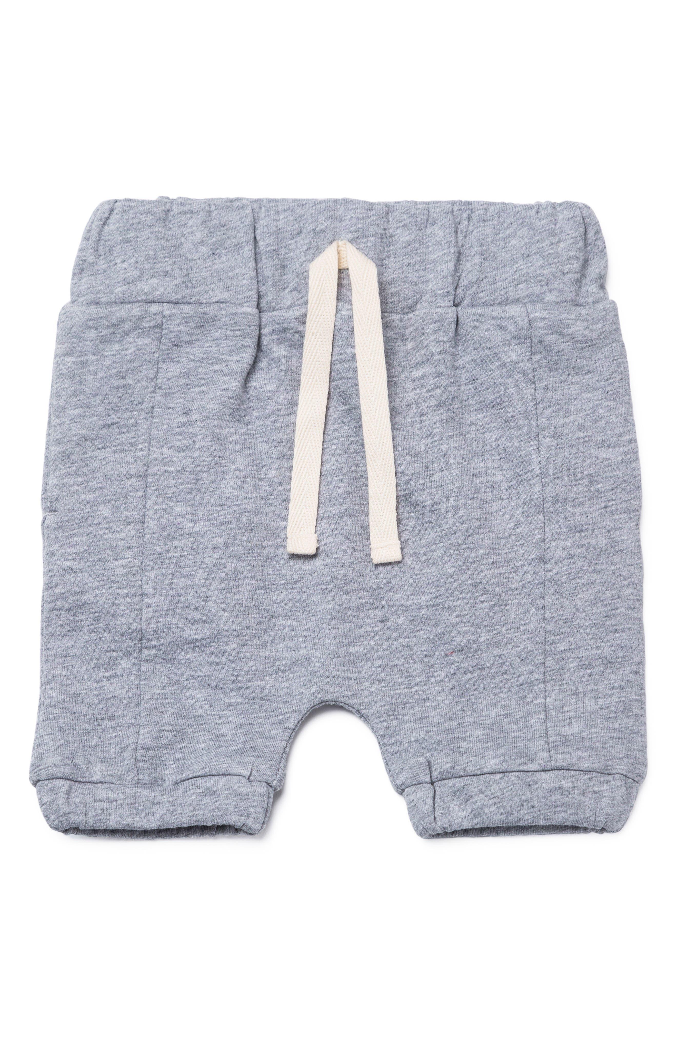 Beach Organic Cotton Jogger Pants,                         Main,                         color, Heather Grey