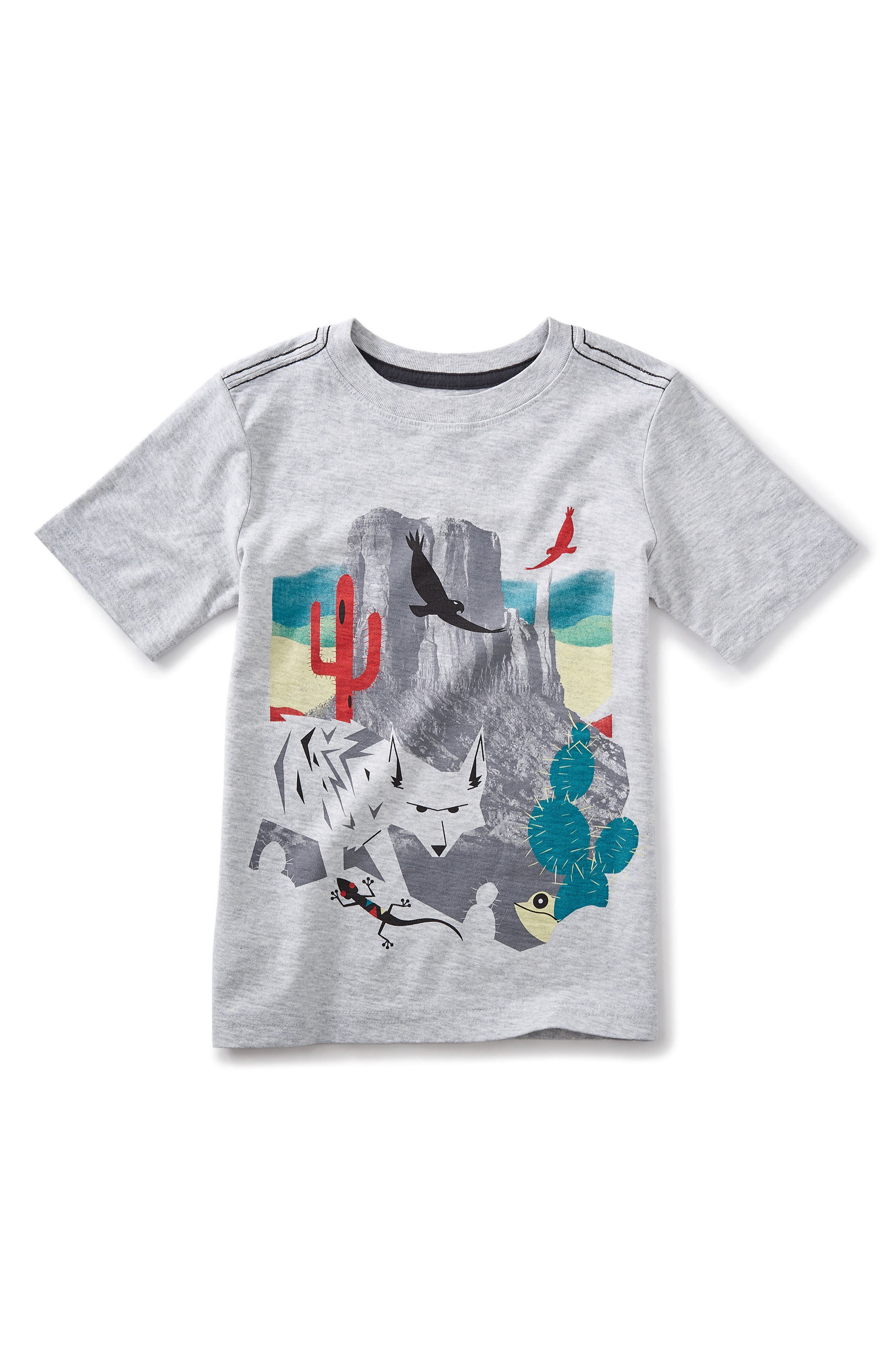 Canyon Lands Graphic T-Shirt,                             Main thumbnail 1, color,                             Light Grey Heather