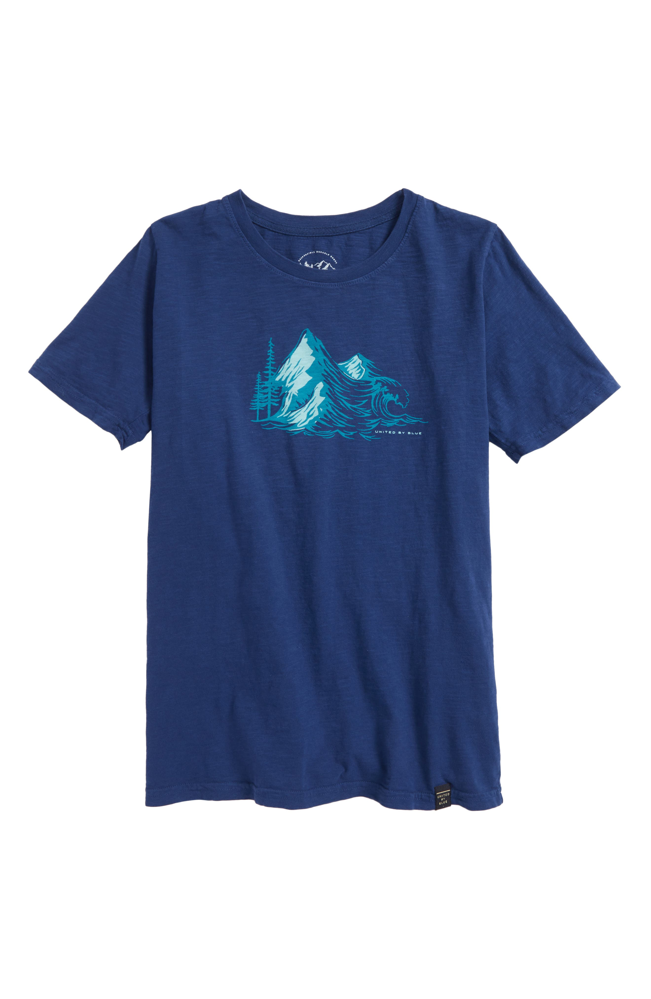 Peaks Graphic Organic Cotton T-Shirt,                             Main thumbnail 1, color,                             Navy