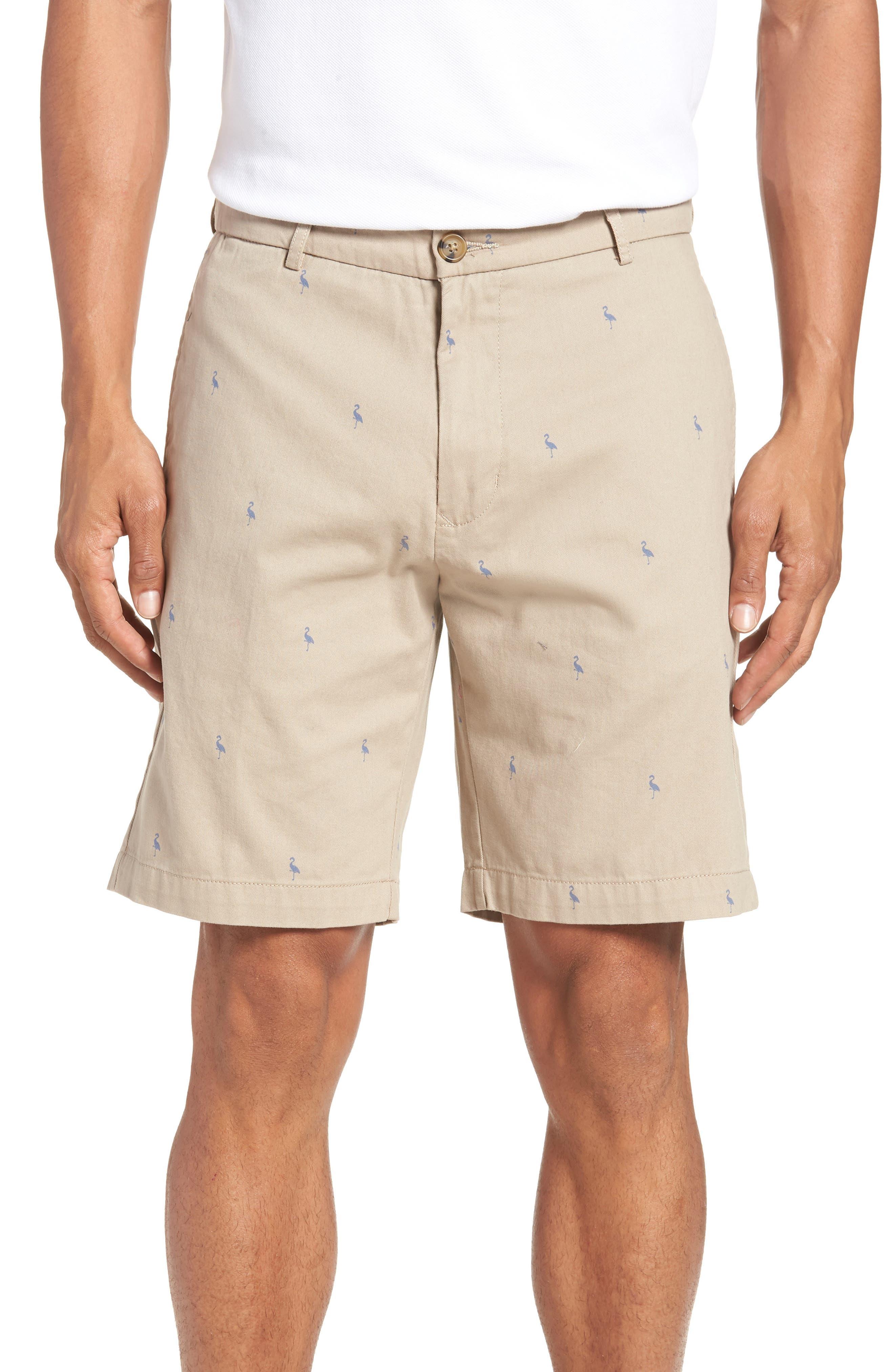 Baden Bird Regular Fit Chino Shorts,                         Main,                         color, Dark Khaki