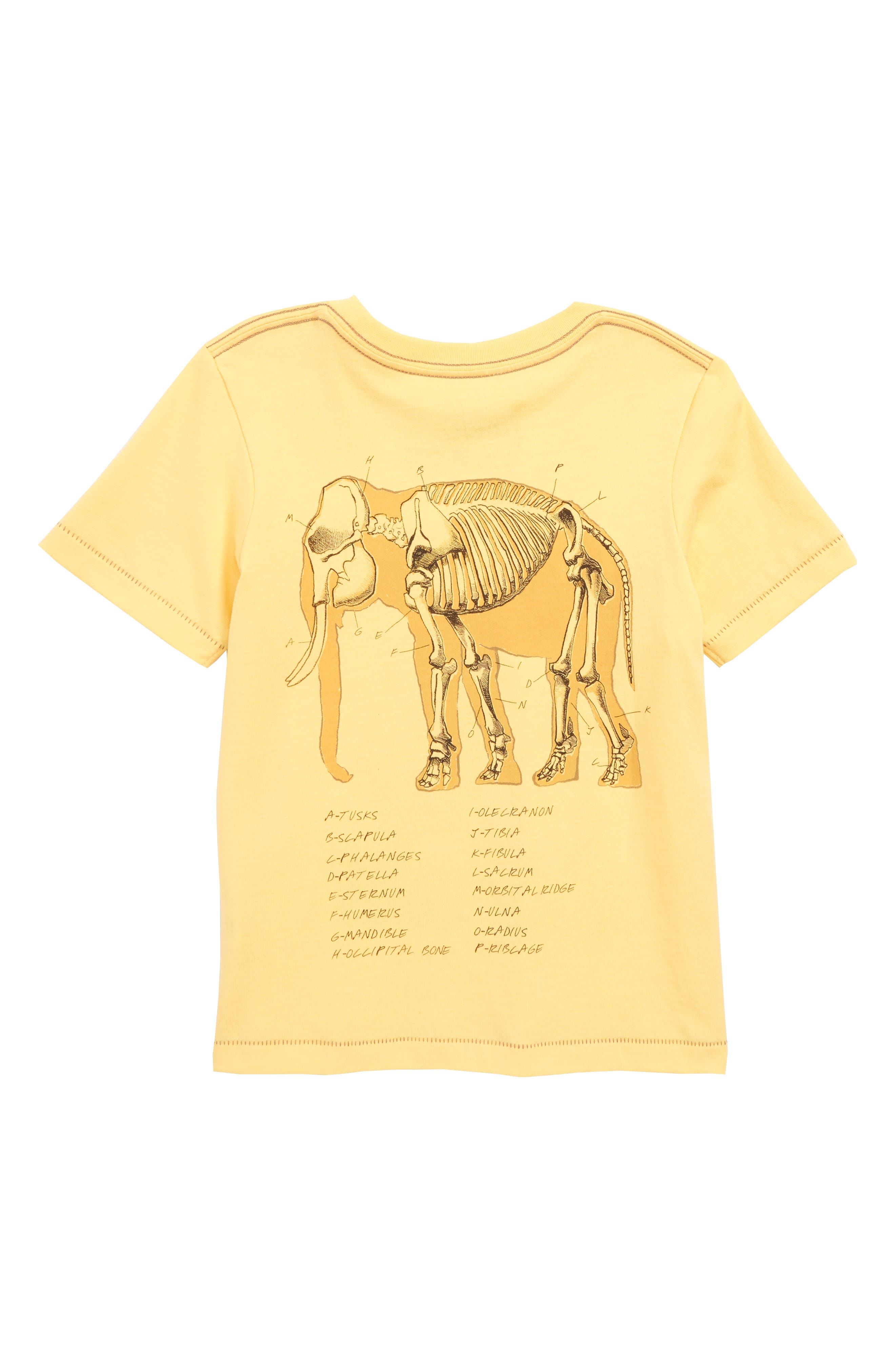 Elephant Graphic T-Shirt,                             Alternate thumbnail 2, color,                             Yellow
