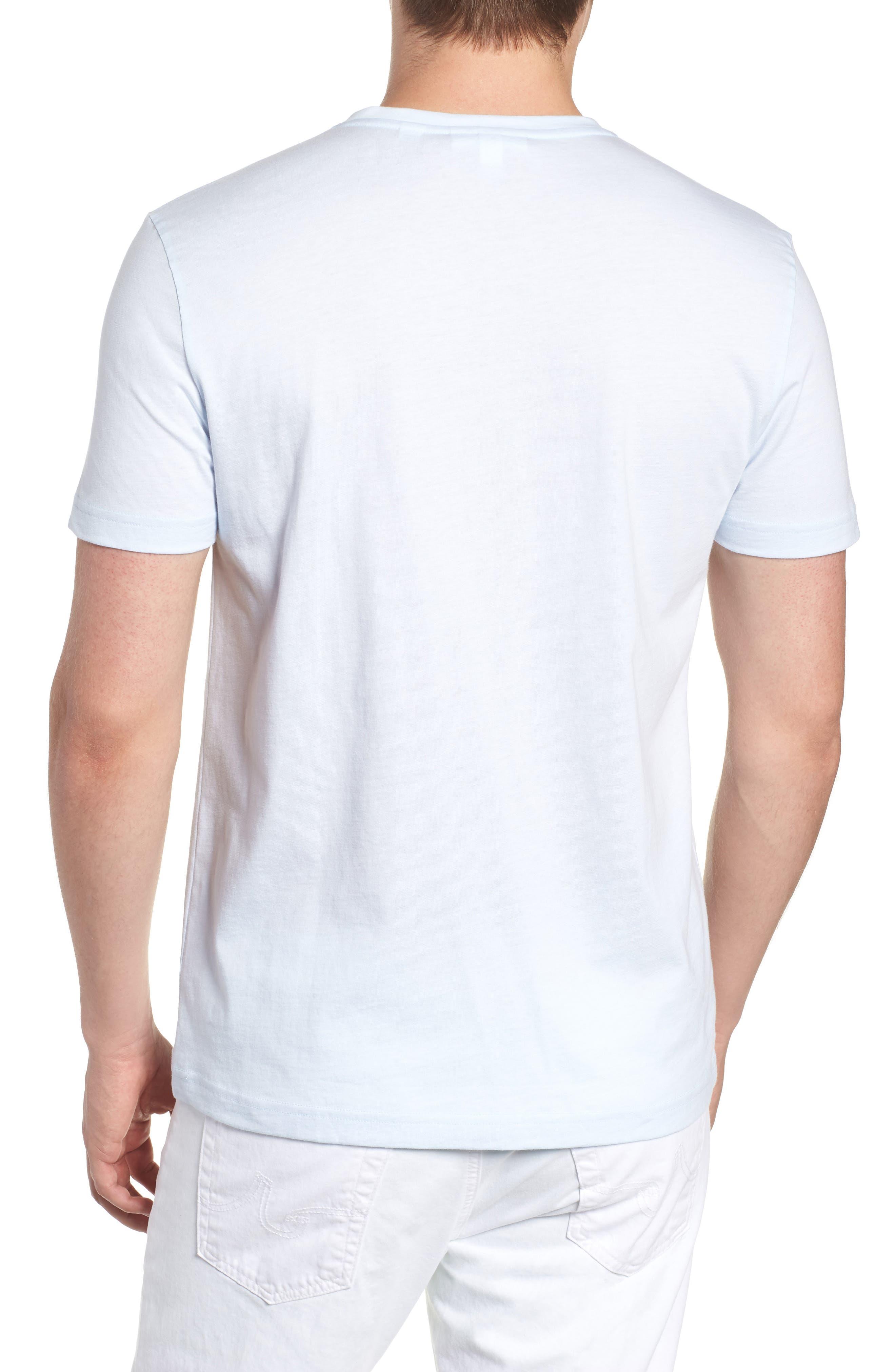 V-Neck Cotton T-Shirt,                             Alternate thumbnail 2, color,                             Rill/ White