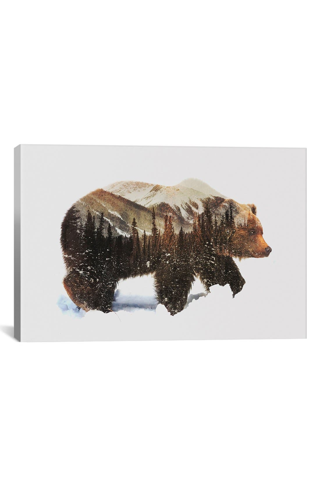 Alternate Image 1 Selected - iCanvas 'Arctic Grizzly Bear' Fine Art Print