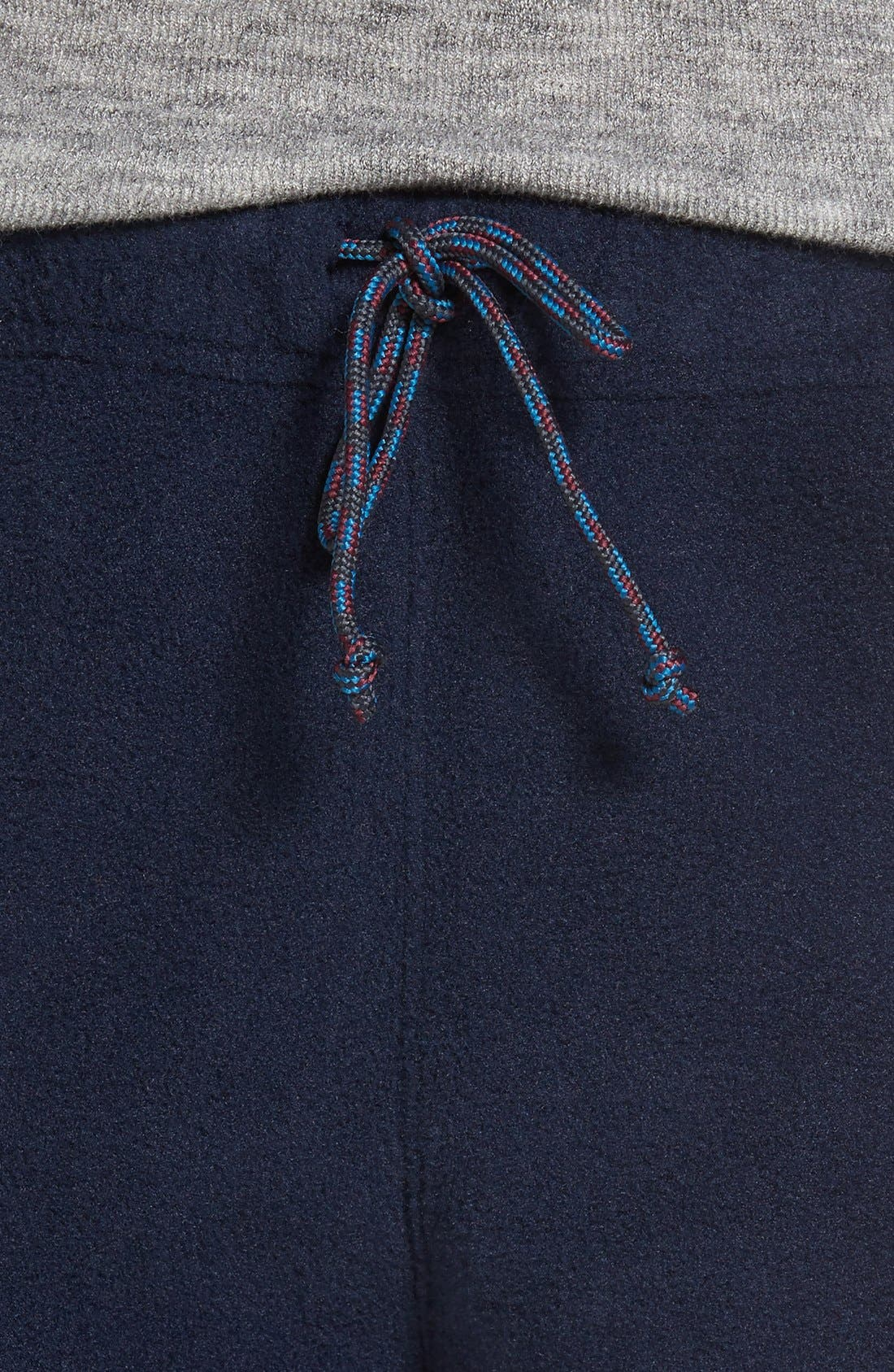 Alternate Image 4  - Patagonia Synchilla® Fleece Pants
