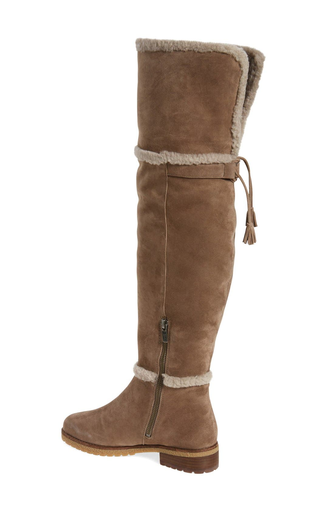 'Tamara' Genuine Shearling Over the Knee Boot,                             Alternate thumbnail 2, color,                             Taupe Suede