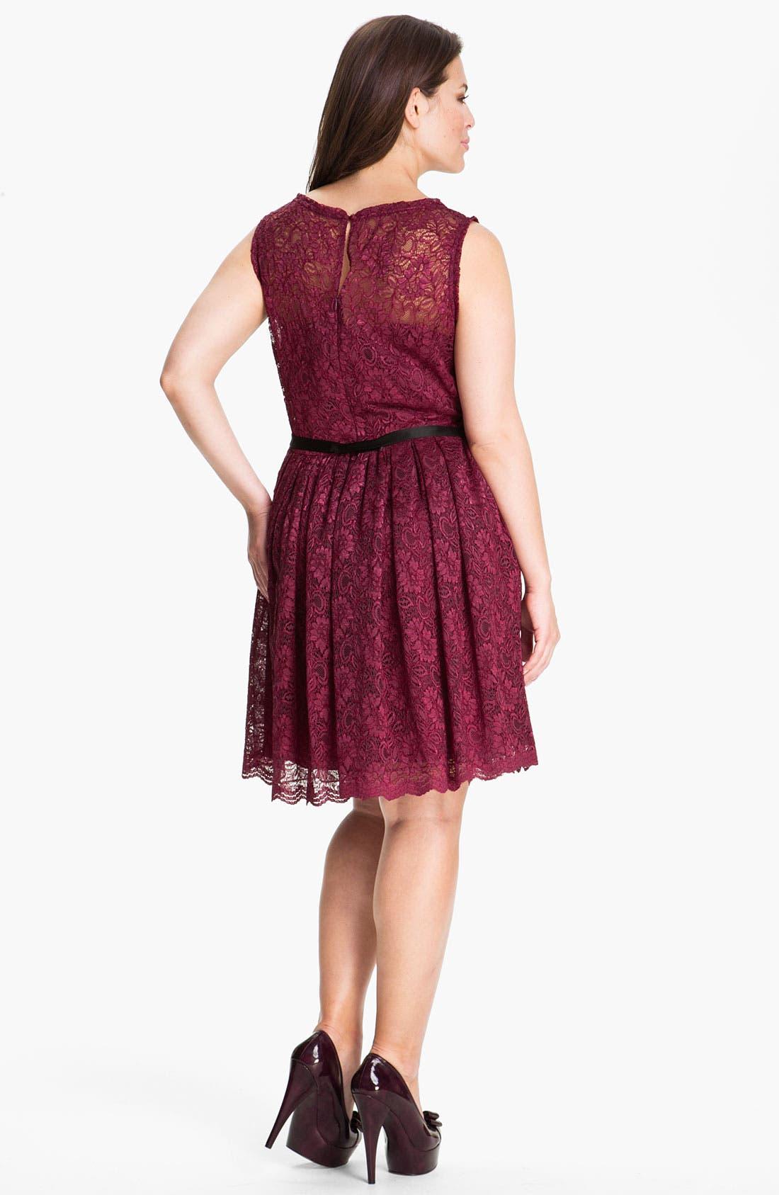 Alternate Image 2  - Taylor Dresses Sleeveless Lace Dress (Plus)