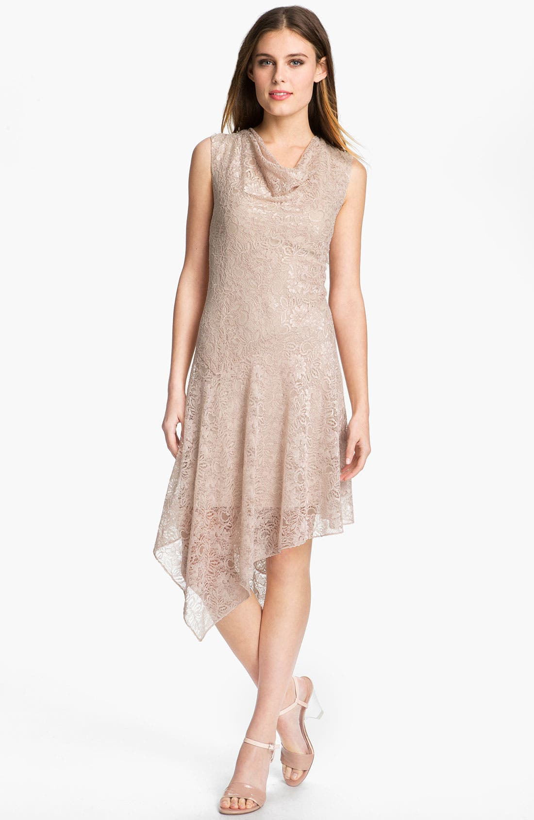 Main Image - Adrianna Papell Cowl Neck Lace Dress
