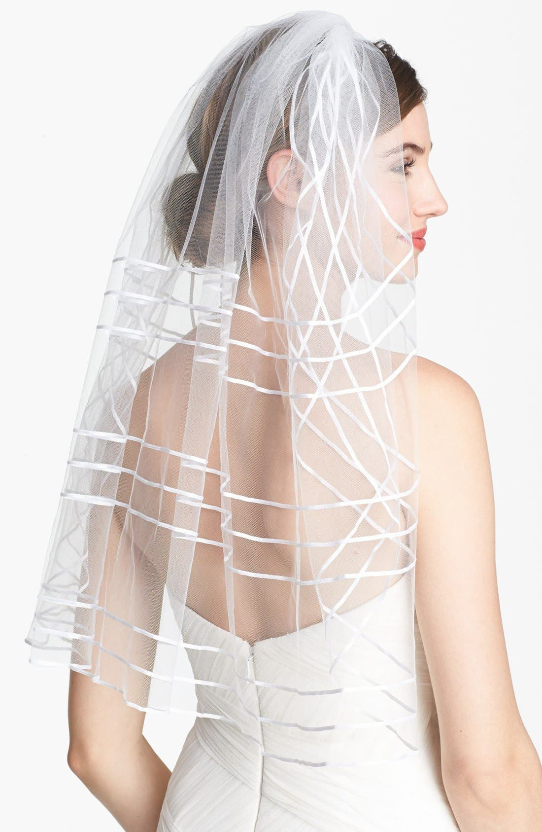 Alternate Image 1 Selected - Tasha Ribbon Veil