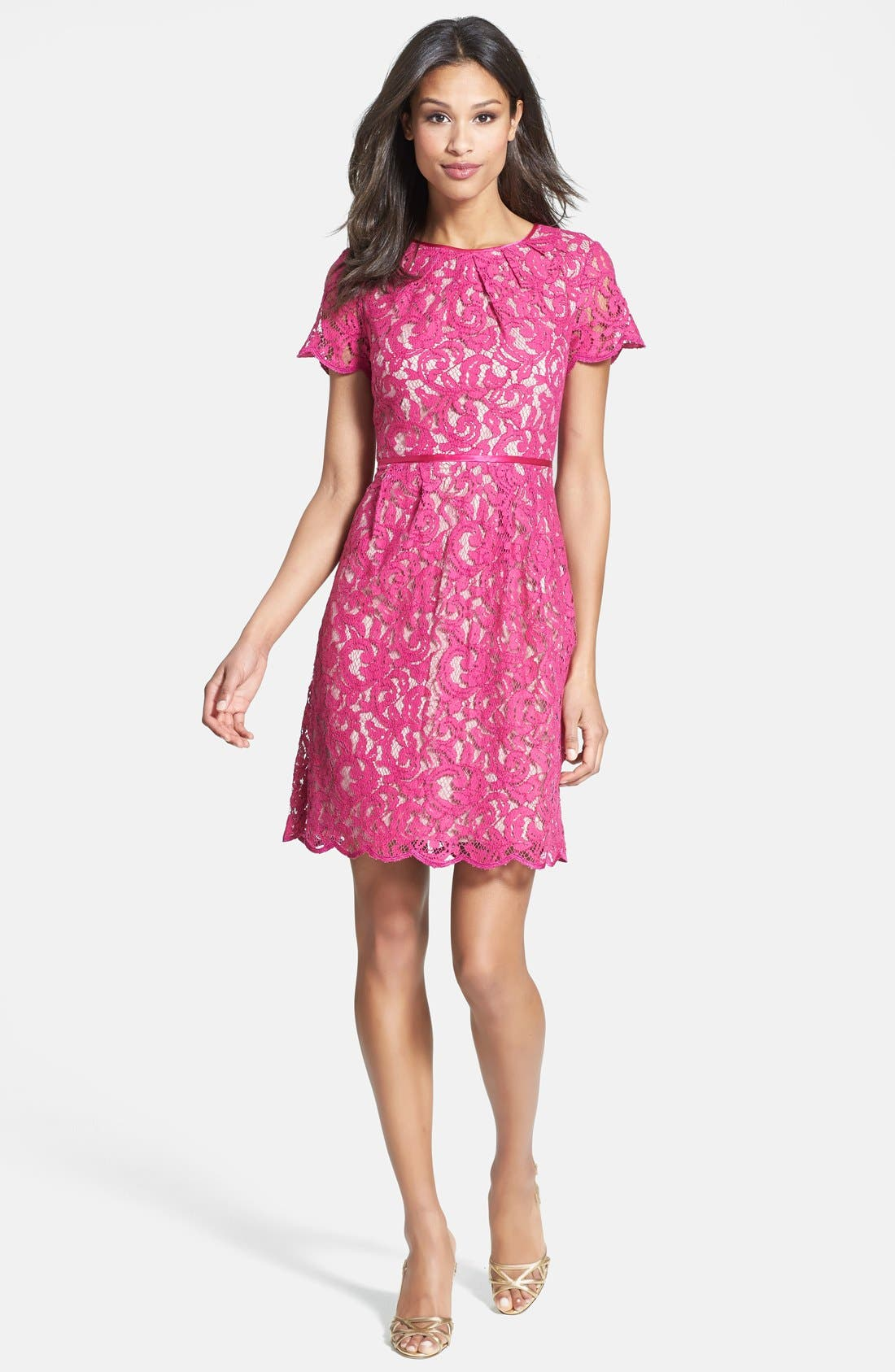 Alternate Image 1 Selected - Adrianna Papell Scalloped Lace Dress
