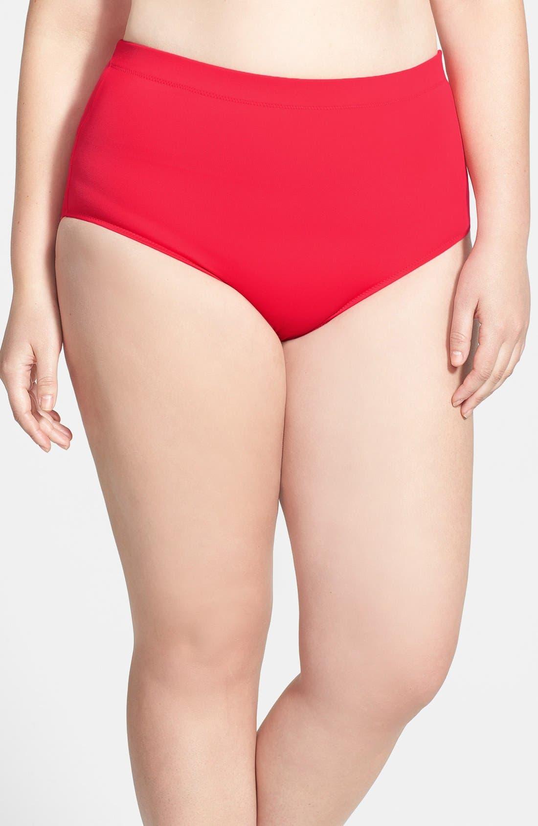 Alternate Image 1 Selected - Elomi 'Elomi Essentials' Classic Swim Briefs (Plus Size)
