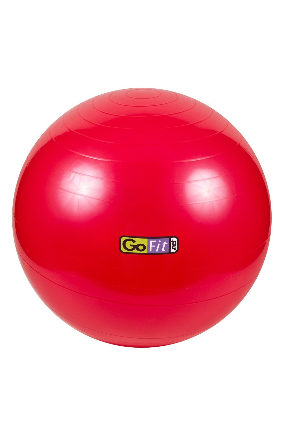 Alternate Image 1 Selected - GoFit Pro Stability Ball (55cm)