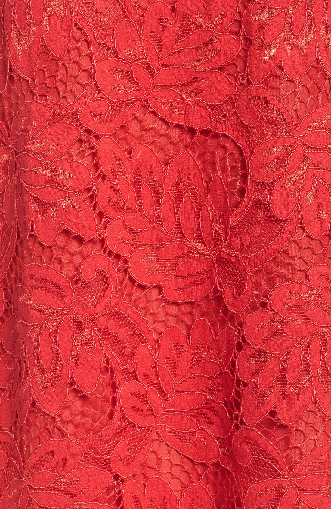 Alternate Image 6  - BB Dakota 'Jacqueline' Lace Shift Dress