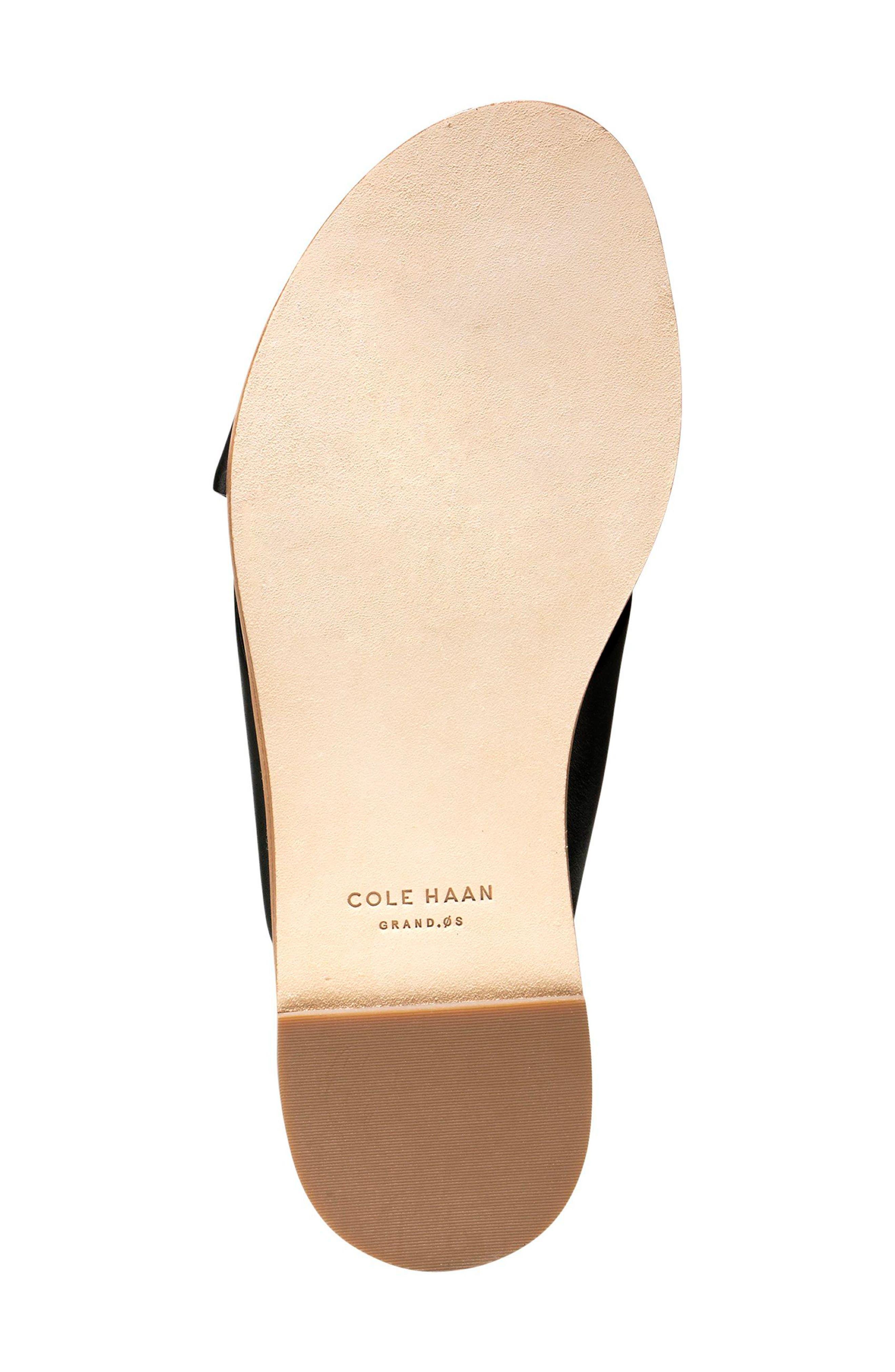 Alternate Image 4  - Cole Haan Anica Slide Sandal (Women)