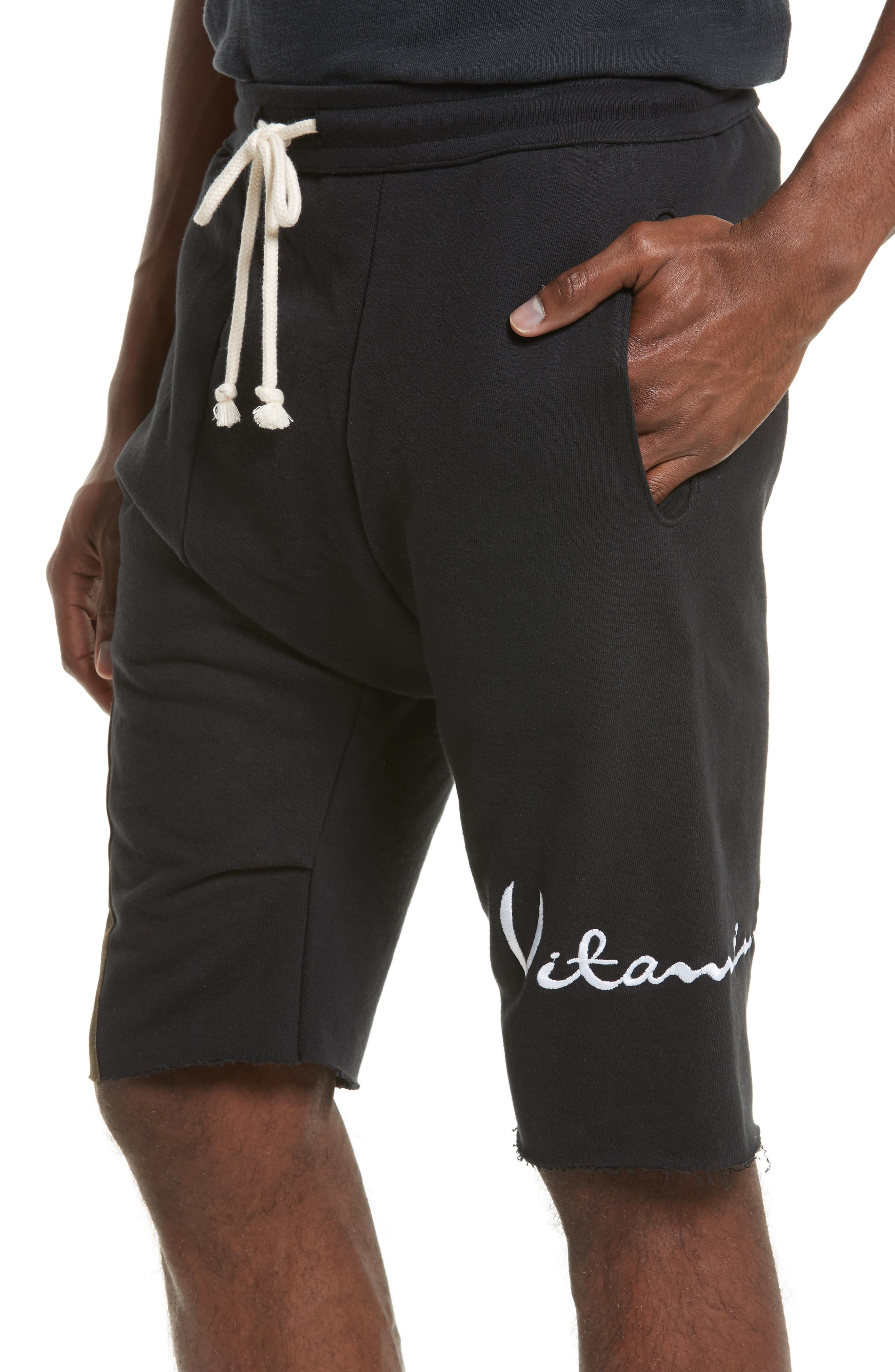 Alternate Image 4  - Drifter Vitamin D Graphic Panel Shorts