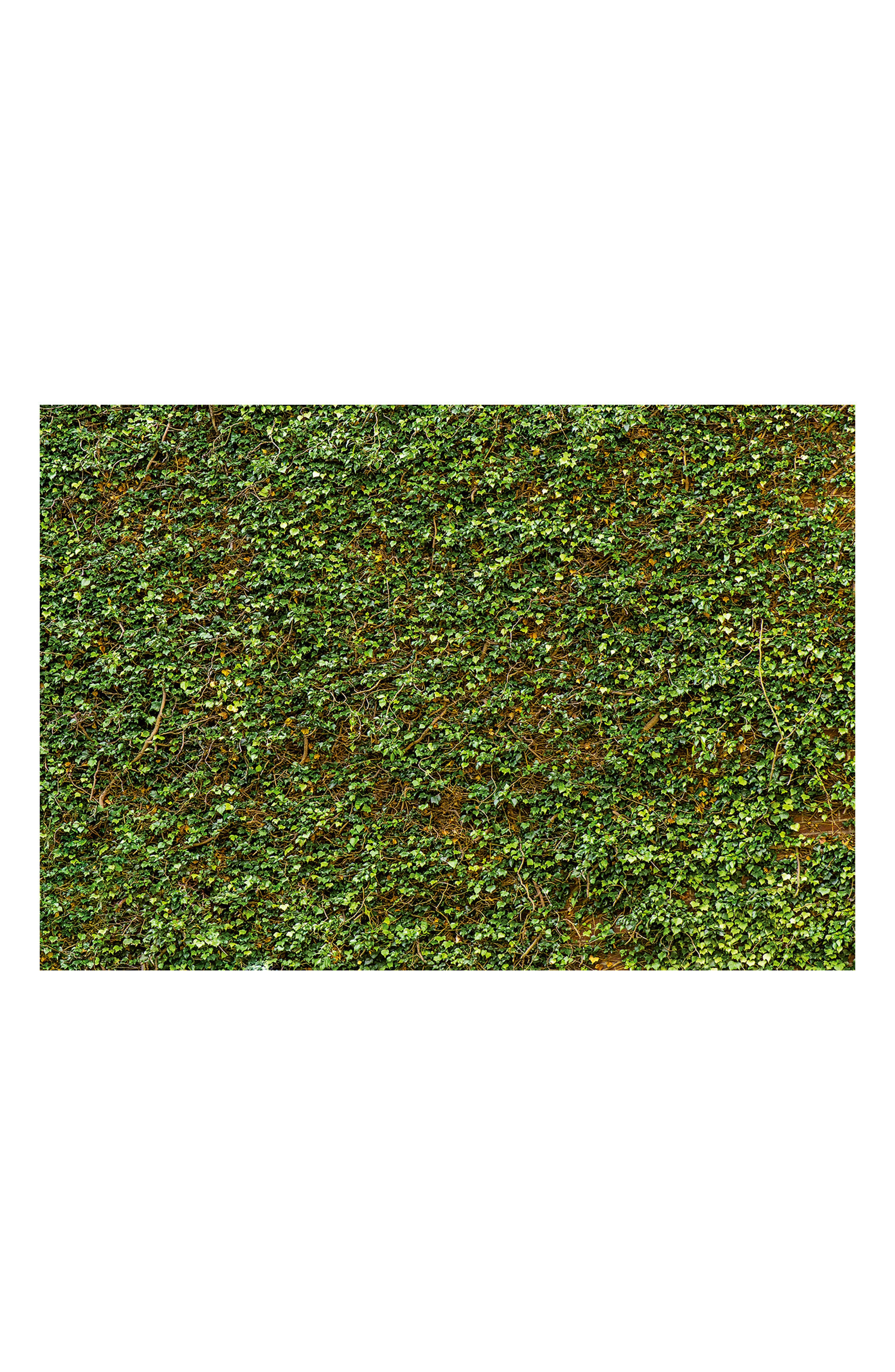 Ivy 8-Panel Wall Mural,                         Main,                         color, Green