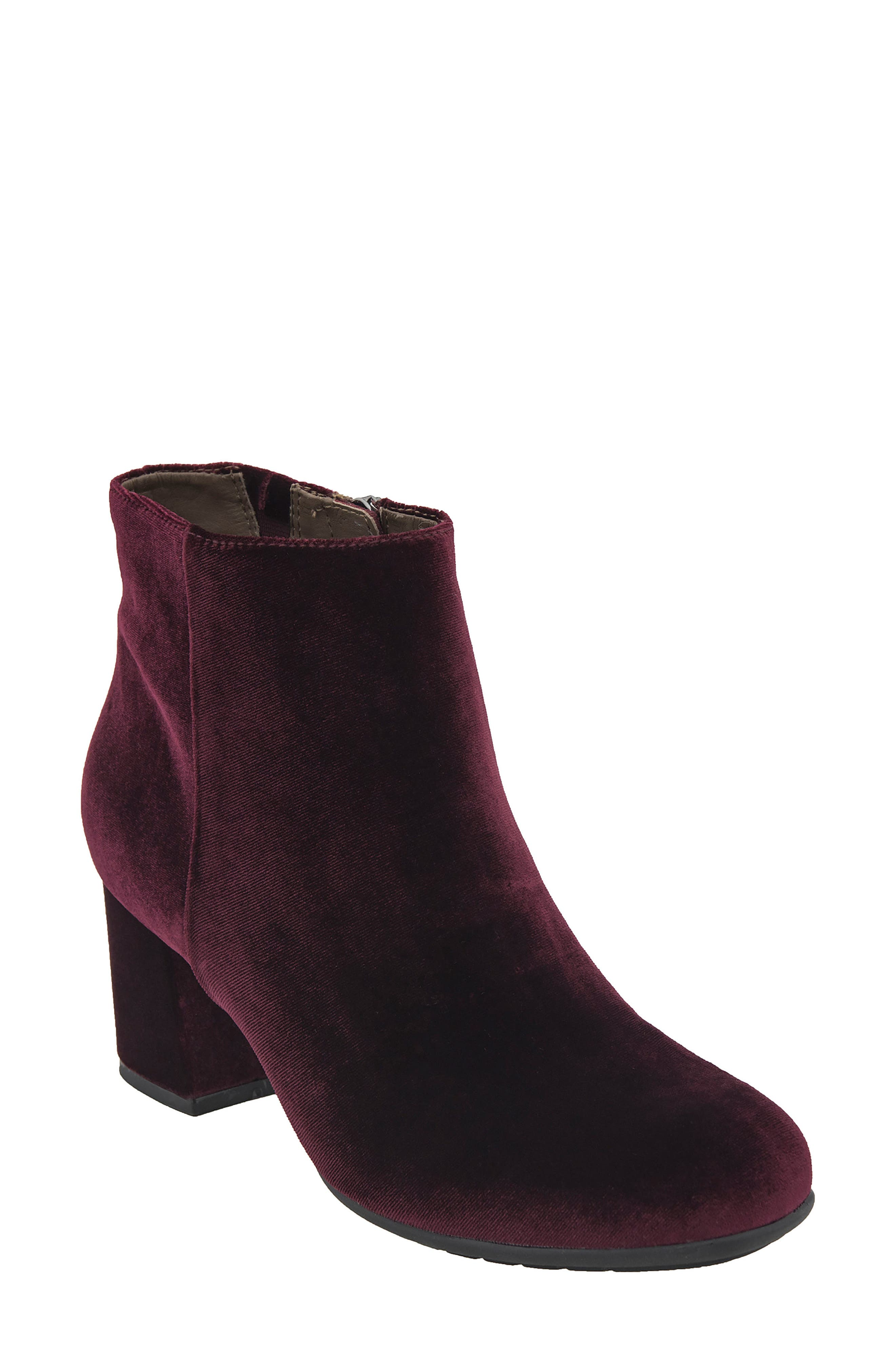 Earthies® Apollo Bootie (Women)