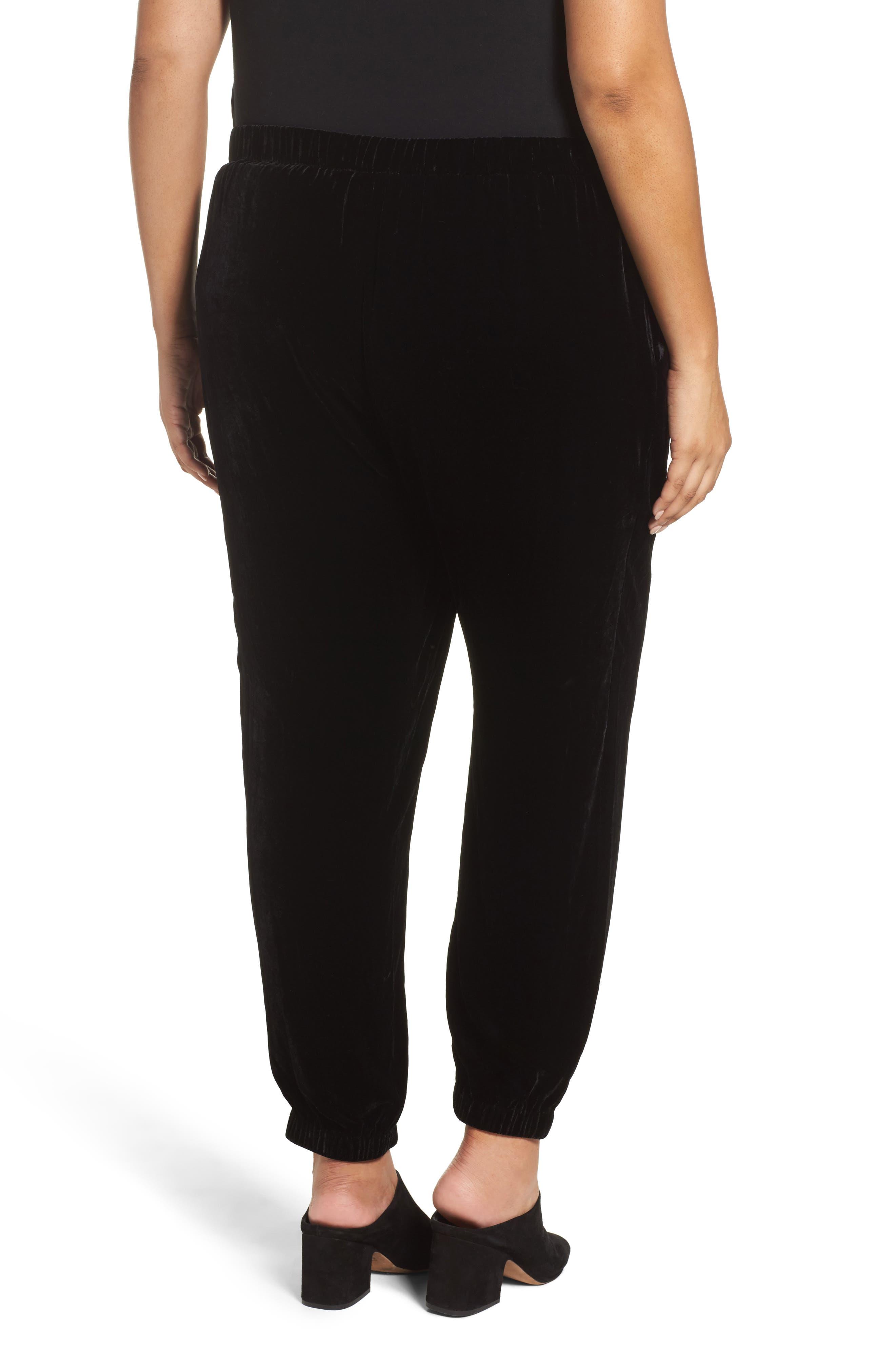Alternate Image 2  - Eileen Fisher Velvet Ankle Pants (Plus Size)