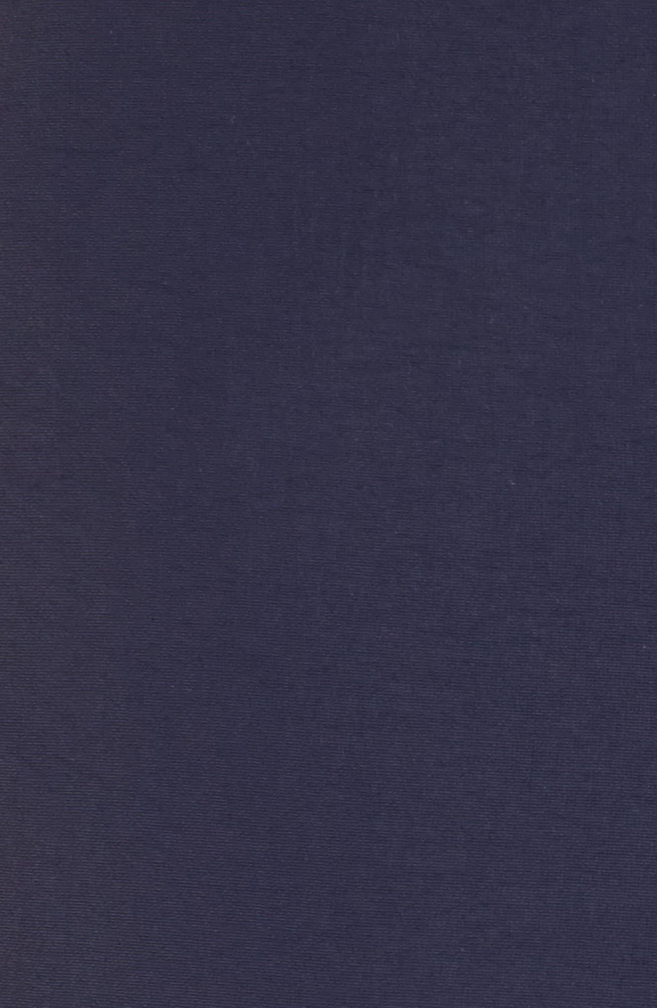 Aruba Tailored Fit French Stripe Swim Trunks,                             Alternate thumbnail 5, color,                             Navy French Stripes