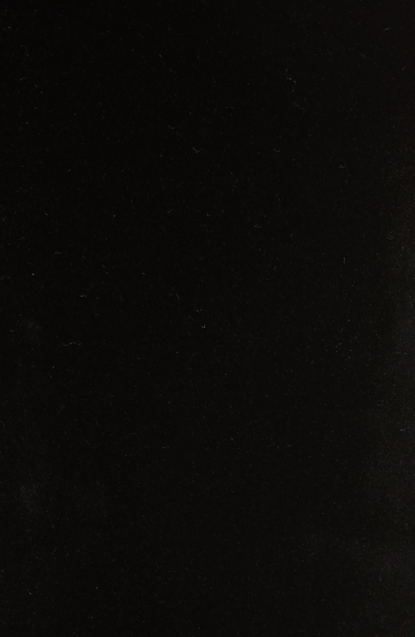 Rona Velvet Blazer,                             Alternate thumbnail 6, color,                             Black