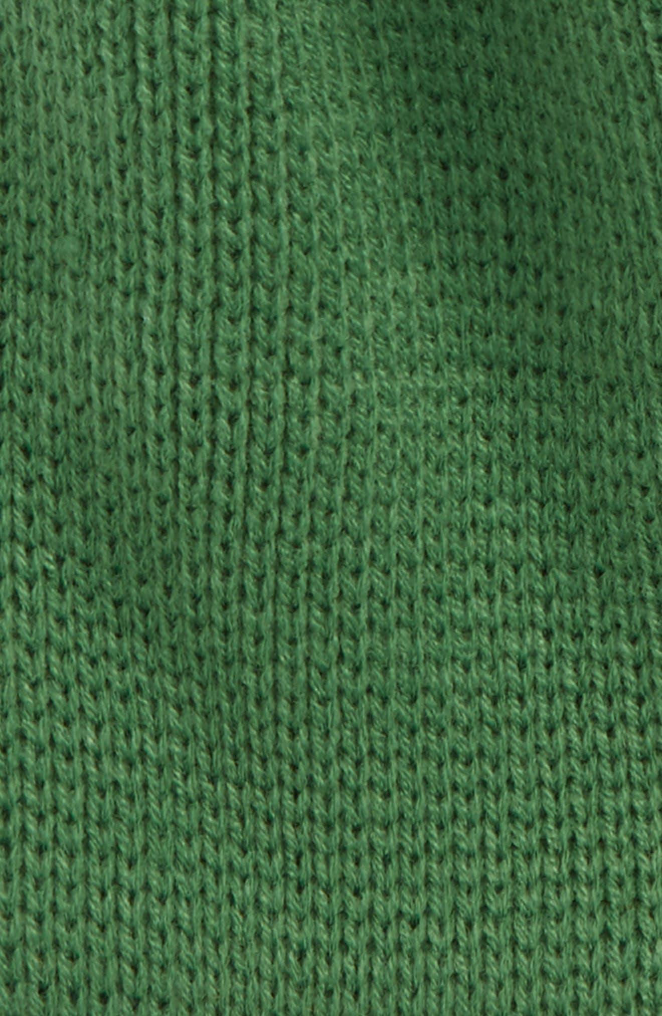 Bones Fleece Lined Beanie,                             Alternate thumbnail 2, color,                             Surface Green