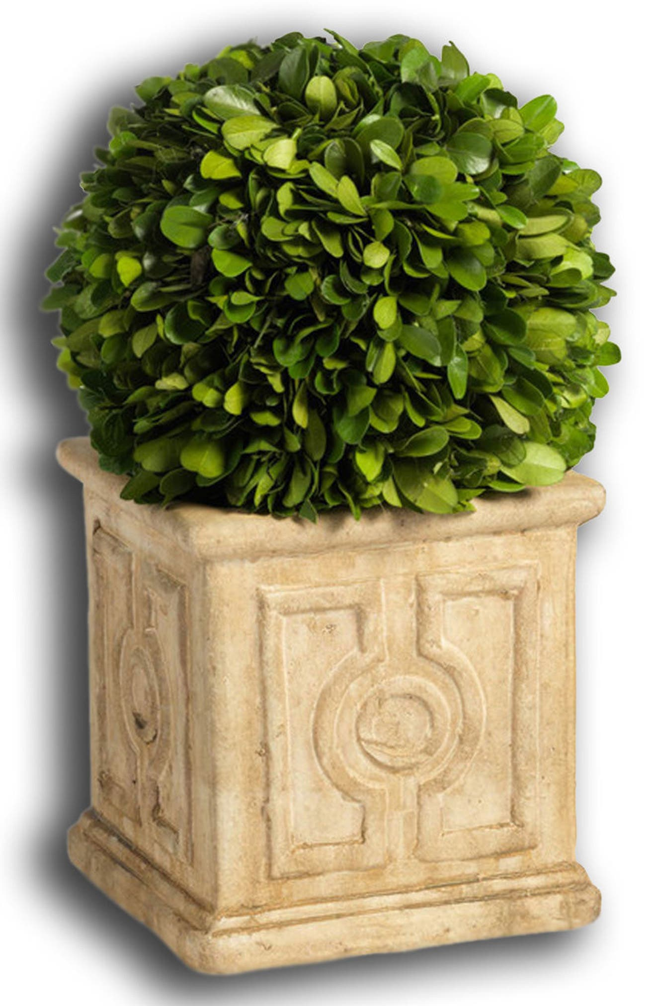 Cinzia Topiary Decoration,                             Main thumbnail 1, color,                             Green
