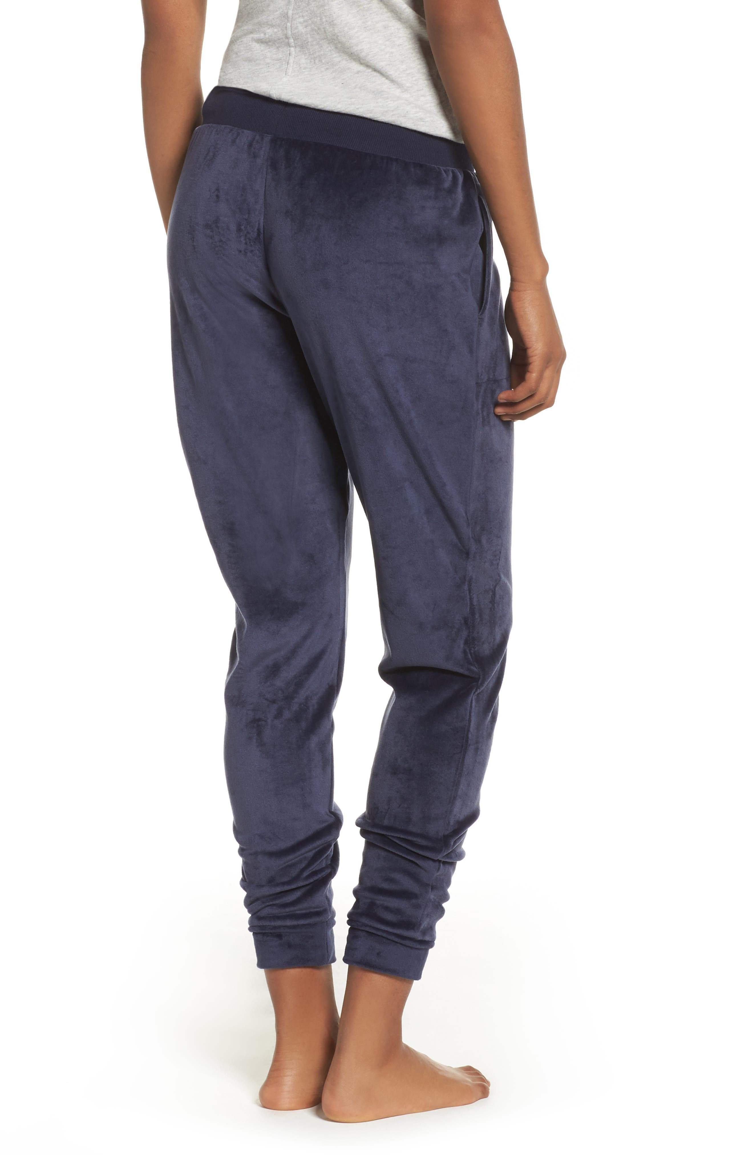 Luxury Plush Lounge Jogger Pants,                             Alternate thumbnail 2, color,                             Blue