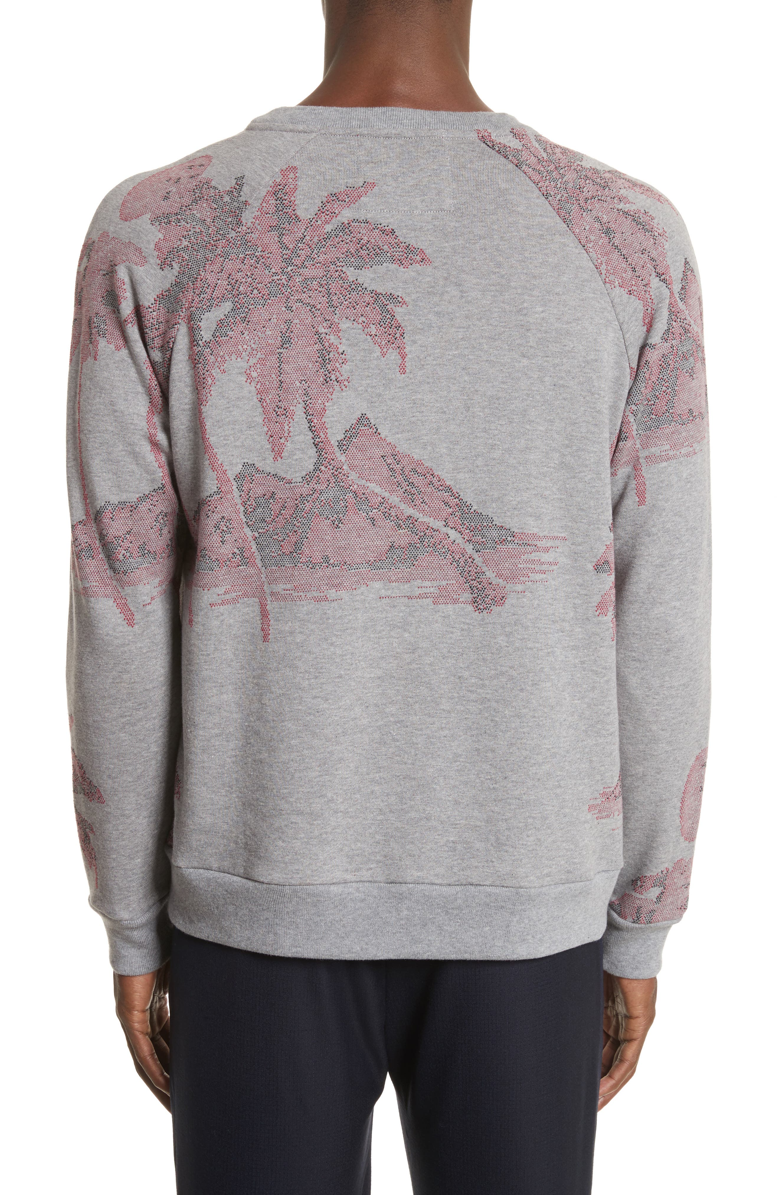 Crewneck Sweatshirt,                             Alternate thumbnail 2, color,                             24 Grey