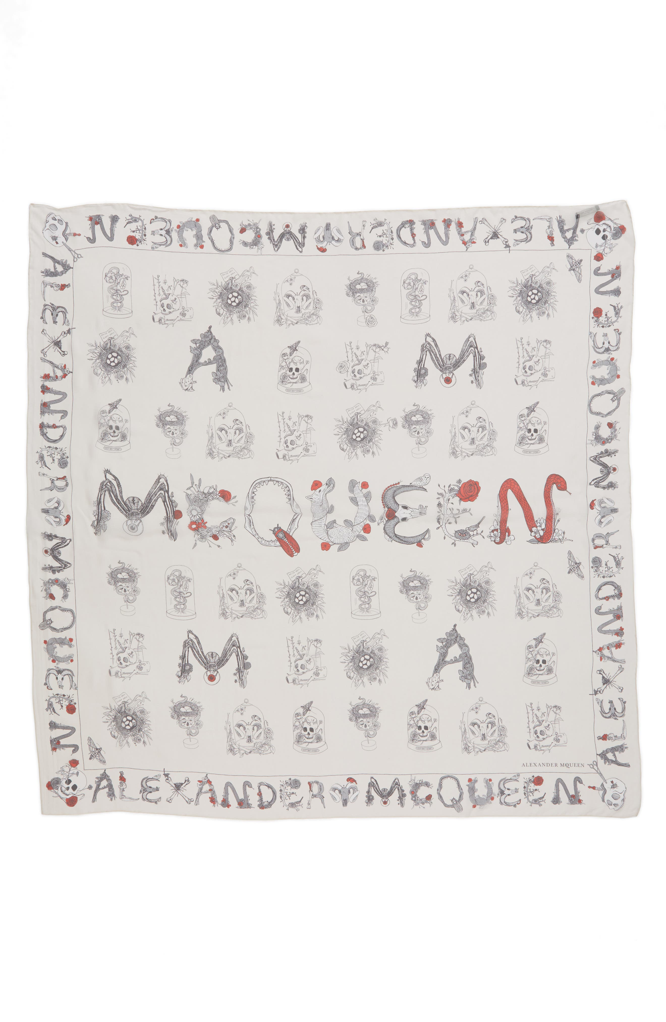 Alternate Image 1 Selected - Alexander McQueen Cabinets Silk Chiffon Scarf