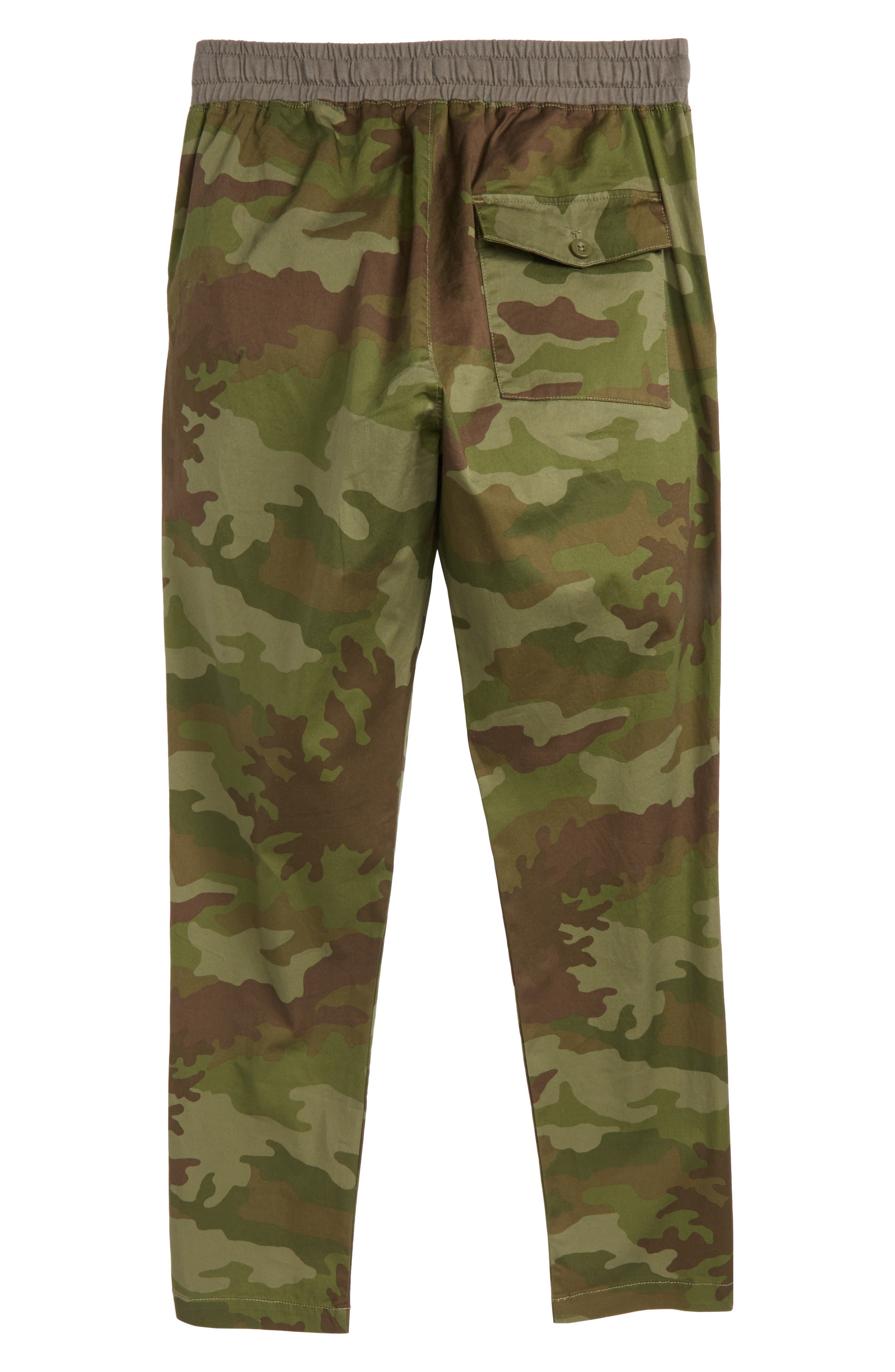 Camo Pull-On Pants,                             Alternate thumbnail 2, color,                             Camo Multi