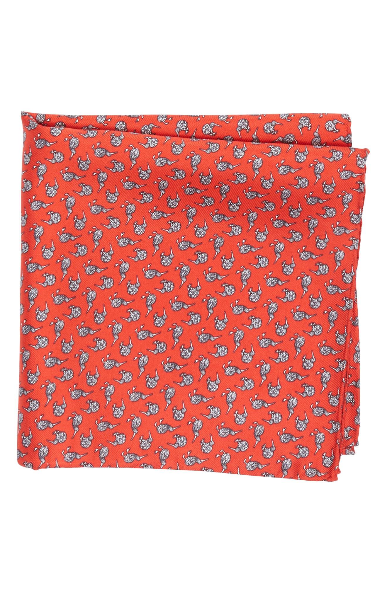 Cheeky Kiwi Silk Pocket Square,                             Main thumbnail 1, color,                             Red