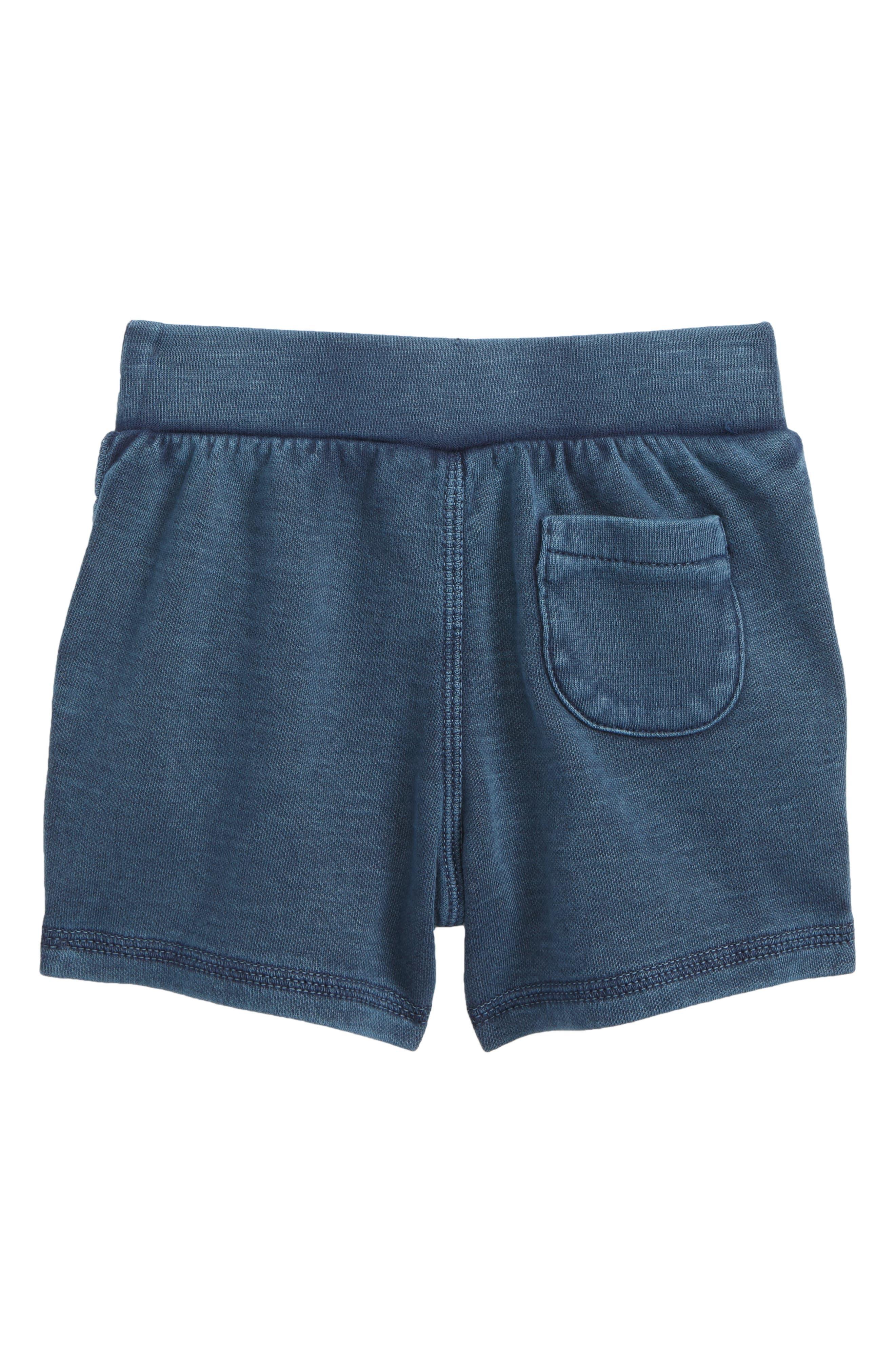 Alternate Image 2  - Tucker + Tate Knit Shorts (Baby Boys)