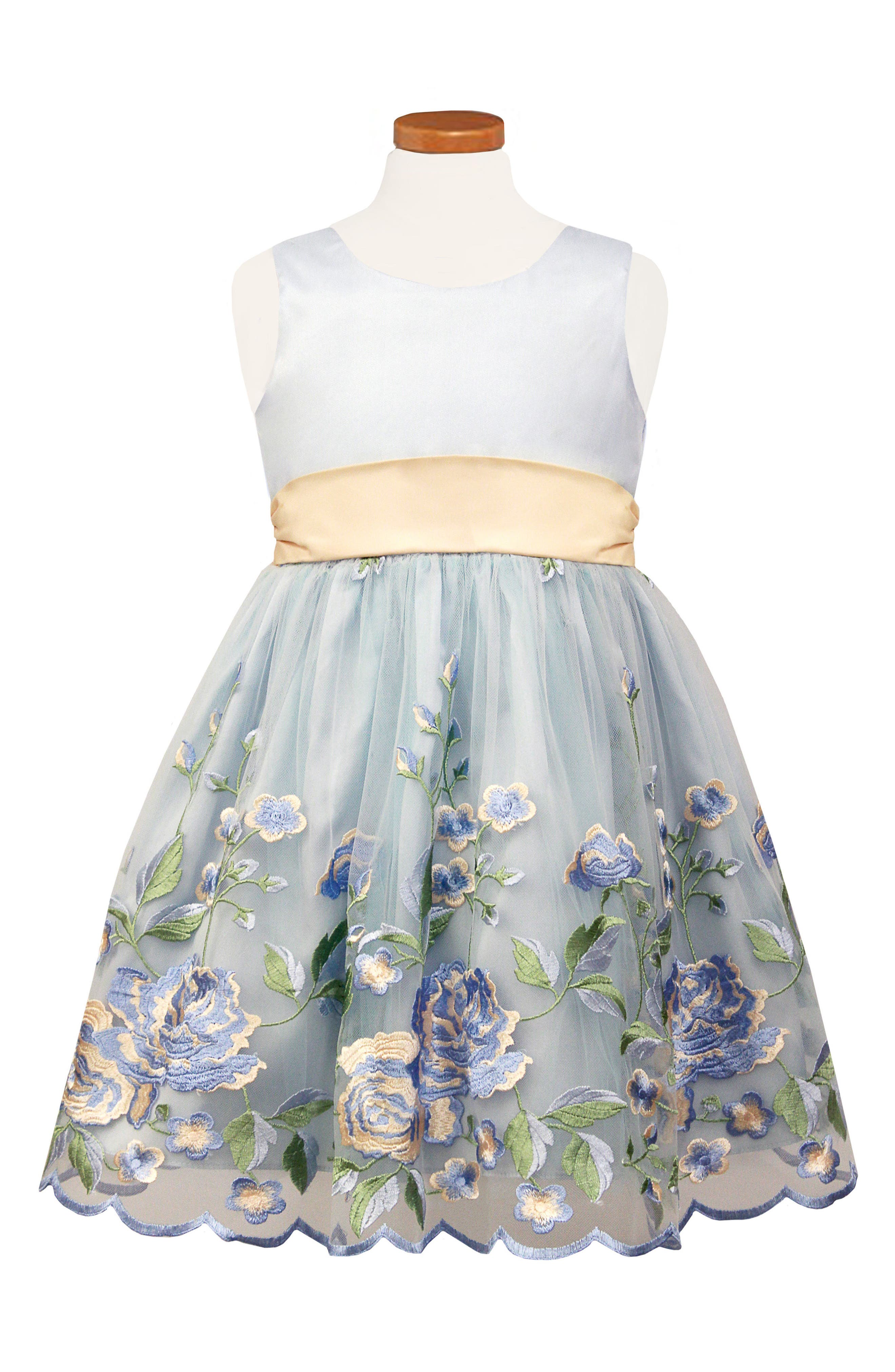 Floral Embroidered Tulle & Organza Party Dress,                             Main thumbnail 1, color,                             Blue